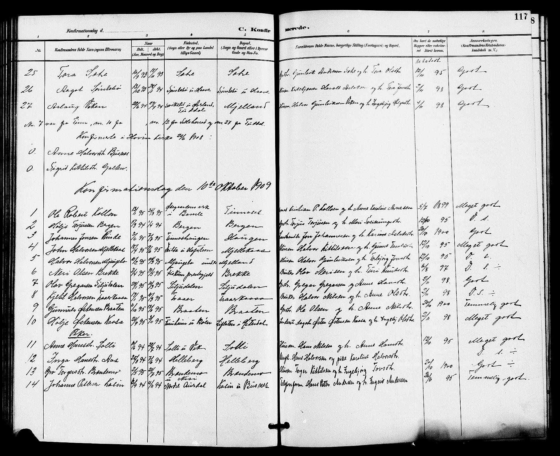 SAKO, Gransherad kirkebøker, G/Ga/L0003: Klokkerbok nr. I 3, 1887-1915, s. 117