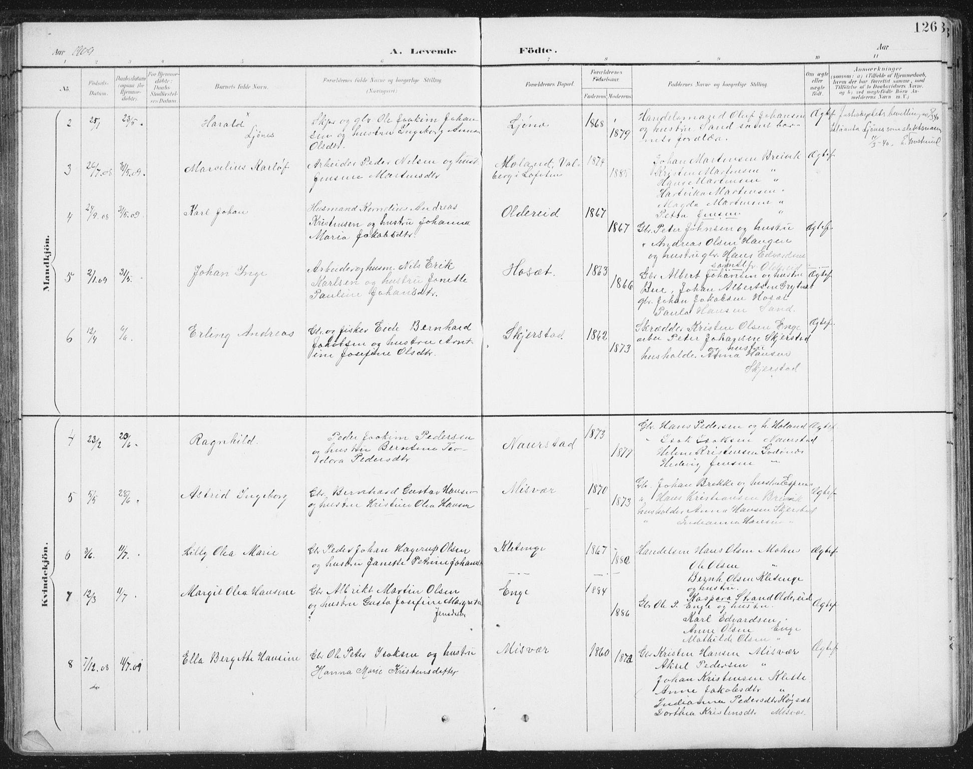 SAT, Ministerialprotokoller, klokkerbøker og fødselsregistre - Nordland, 852/L0741: Ministerialbok nr. 852A11, 1894-1917, s. 126