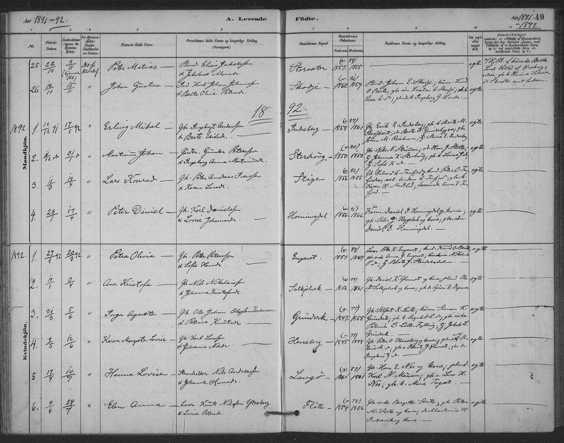 SAT, Ministerialprotokoller, klokkerbøker og fødselsregistre - Møre og Romsdal, 524/L0356: Ministerialbok nr. 524A08, 1880-1899, s. 49