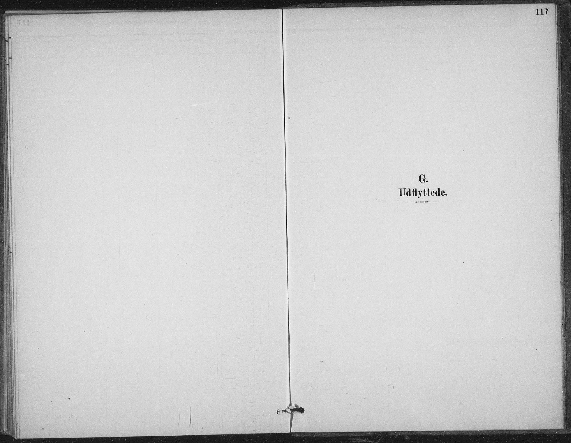 SAT, Ministerialprotokoller, klokkerbøker og fødselsregistre - Nord-Trøndelag, 702/L0023: Ministerialbok nr. 702A01, 1883-1897, s. 117