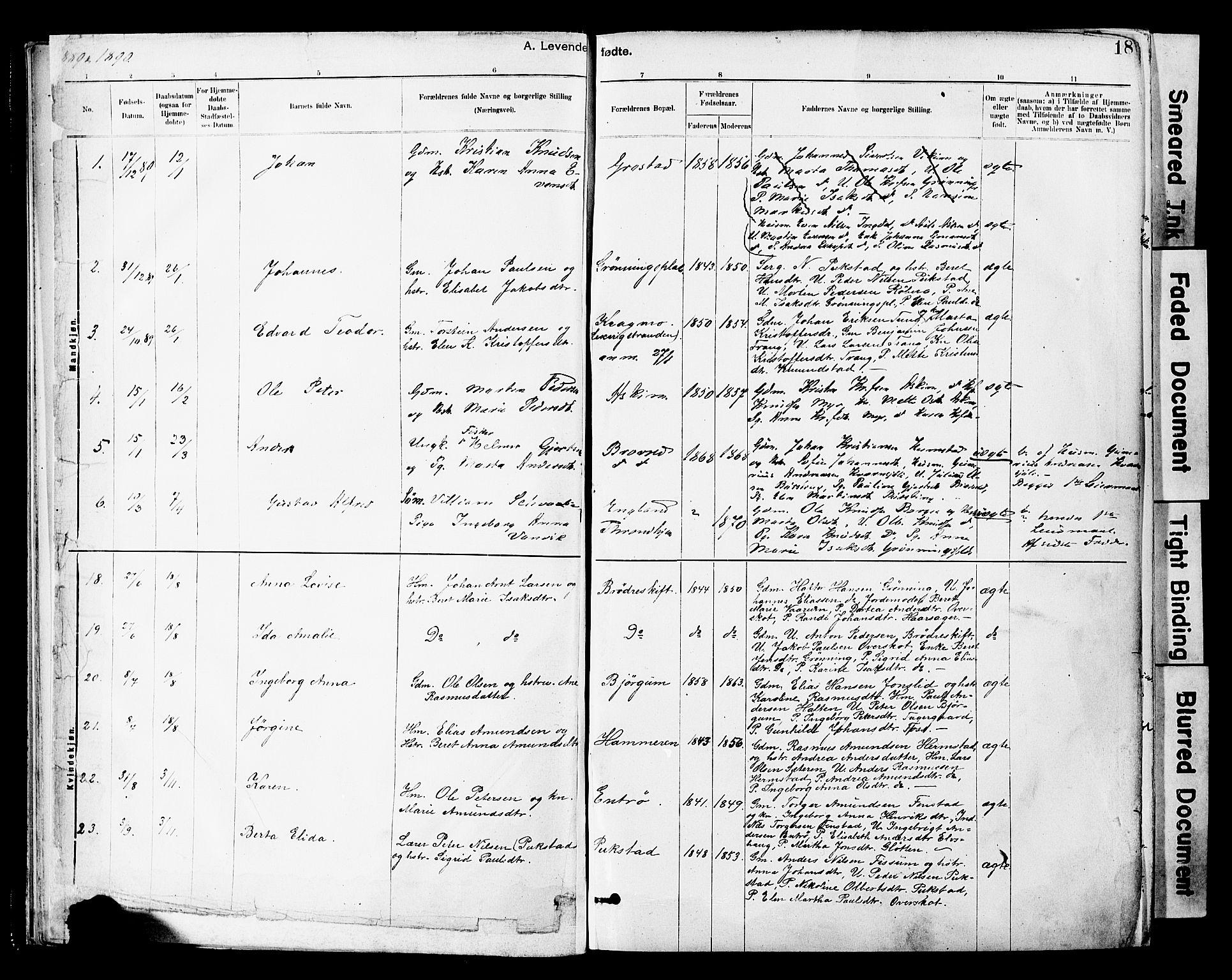 SAT, Ministerialprotokoller, klokkerbøker og fødselsregistre - Sør-Trøndelag, 646/L0615: Ministerialbok nr. 646A13, 1885-1900, s. 18