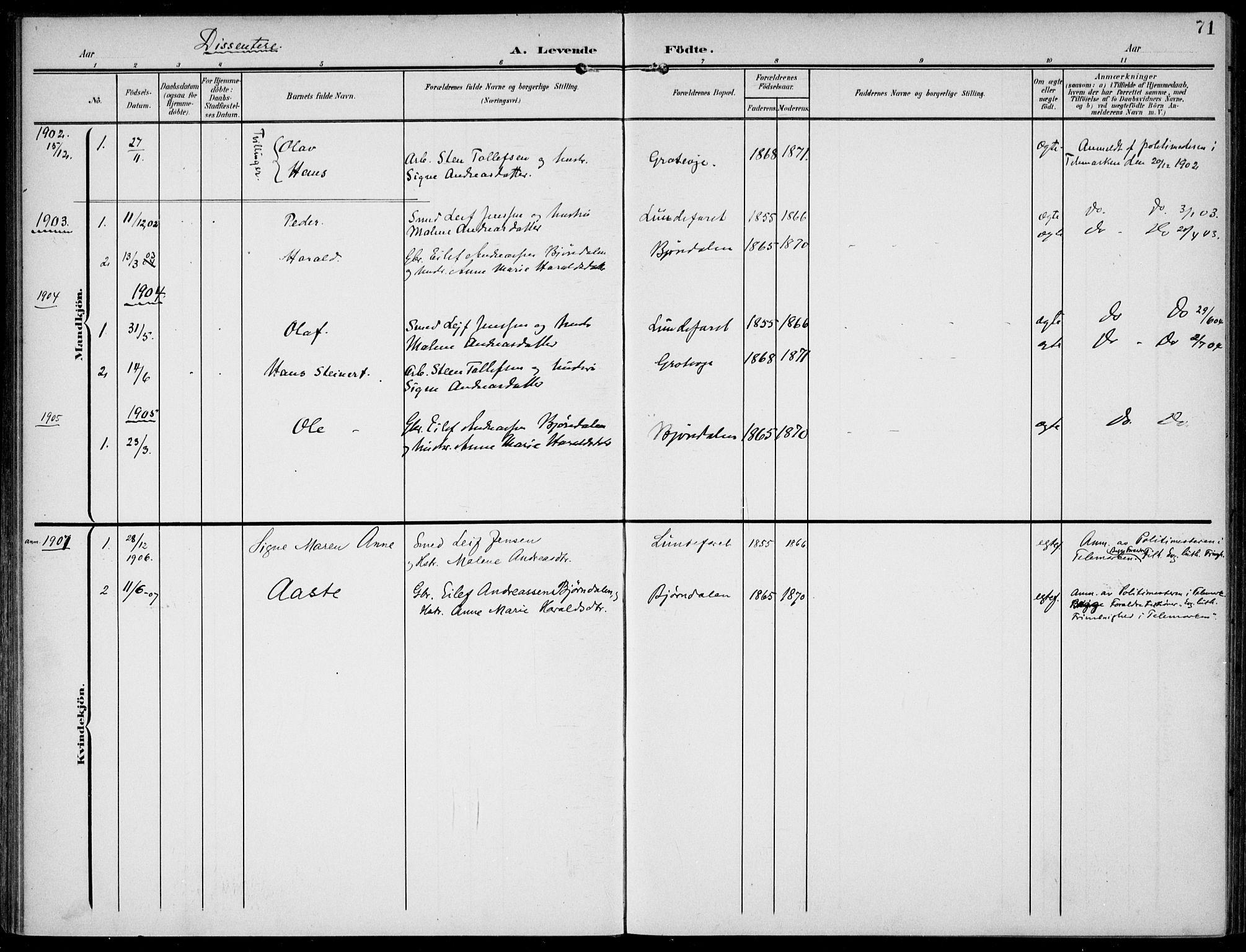 SAKO, Lunde kirkebøker, F/Fa/L0004: Ministerialbok nr. I 4, 1902-1913, s. 71