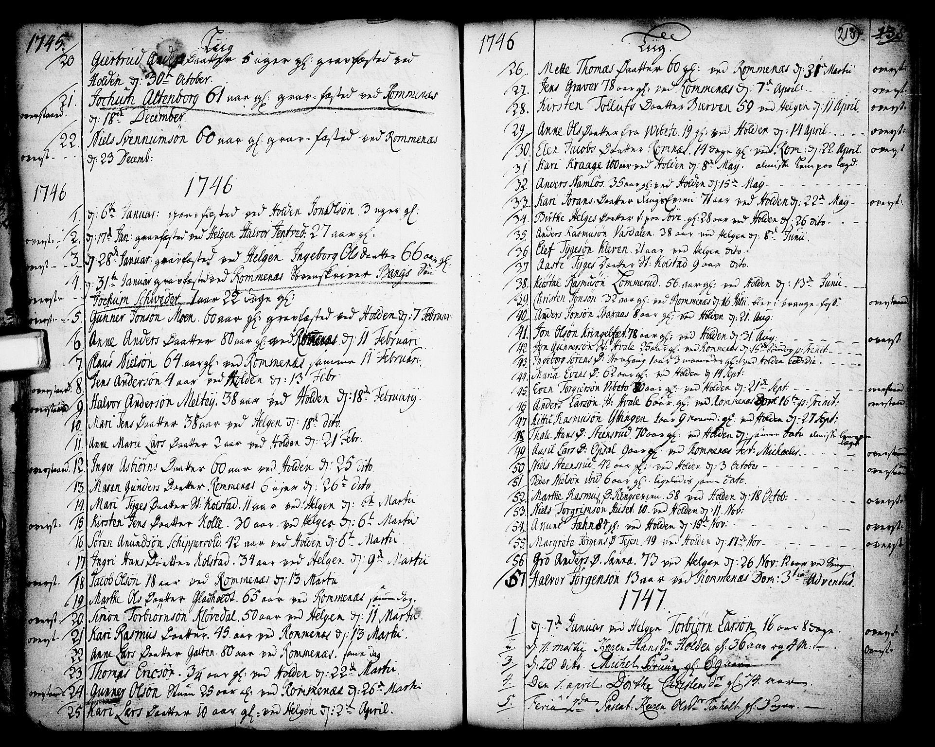 SAKO, Holla kirkebøker, F/Fa/L0001: Ministerialbok nr. 1, 1717-1779, s. 213