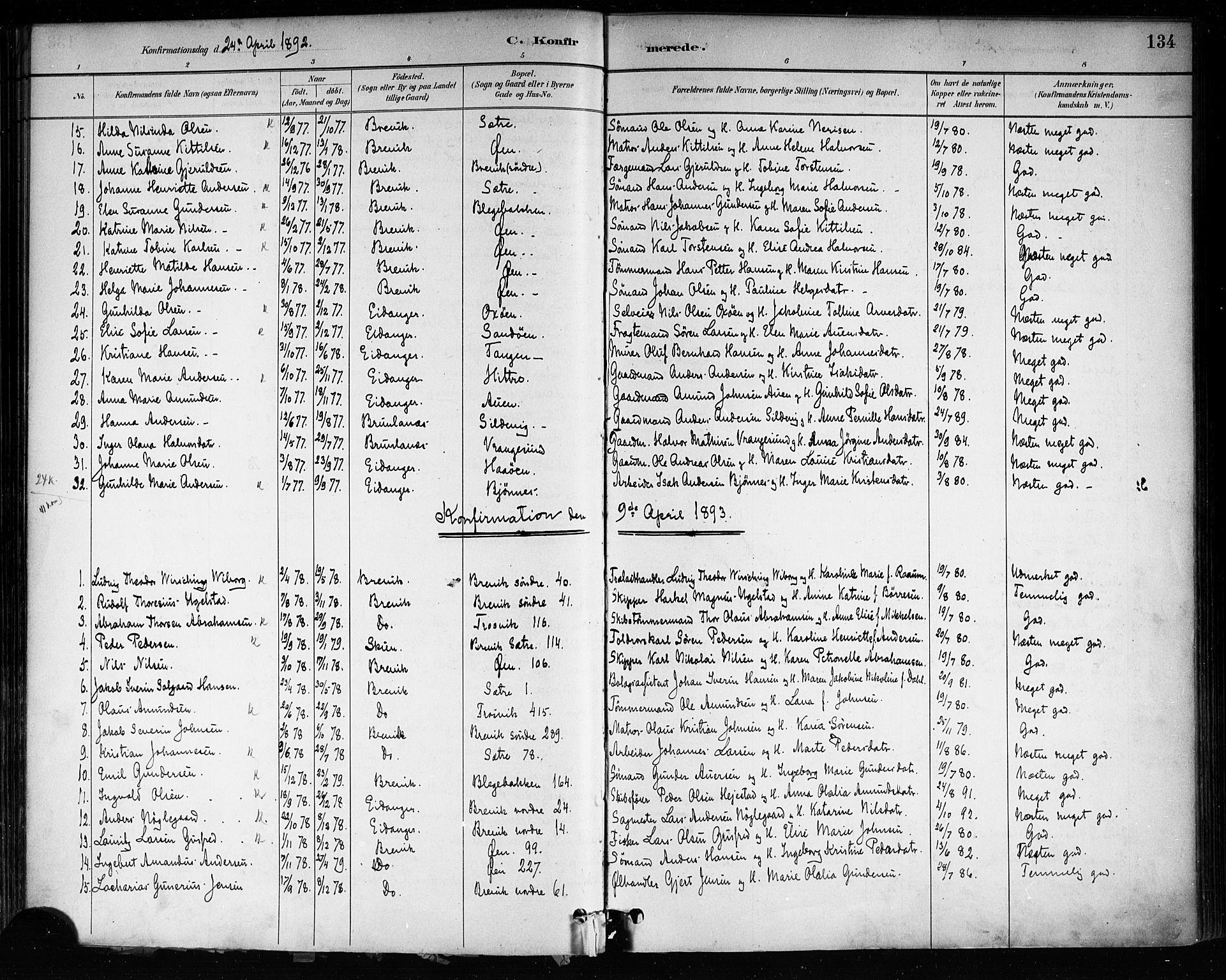SAKO, Brevik kirkebøker, F/Fa/L0007: Ministerialbok nr. 7, 1882-1900, s. 134