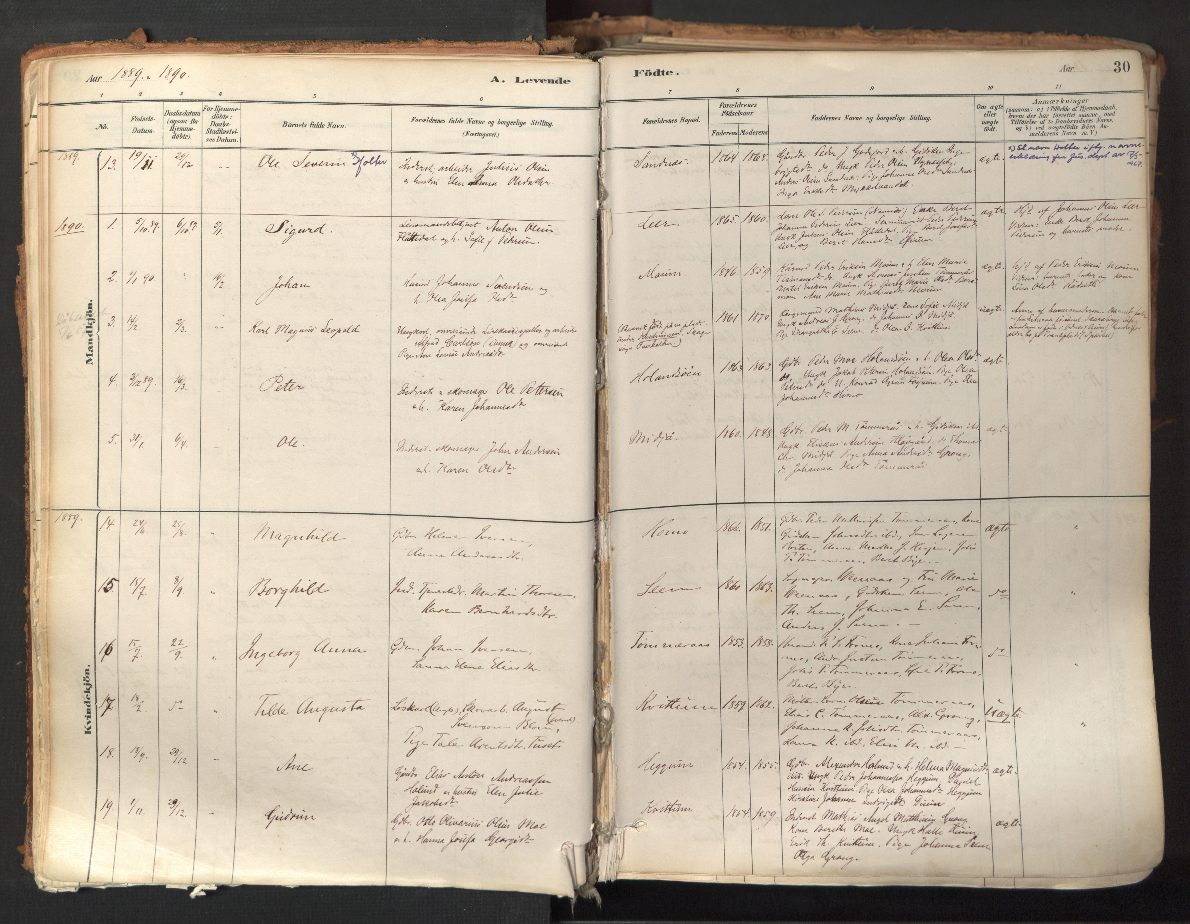 SAT, Ministerialprotokoller, klokkerbøker og fødselsregistre - Nord-Trøndelag, 758/L0519: Ministerialbok nr. 758A04, 1880-1926, s. 30