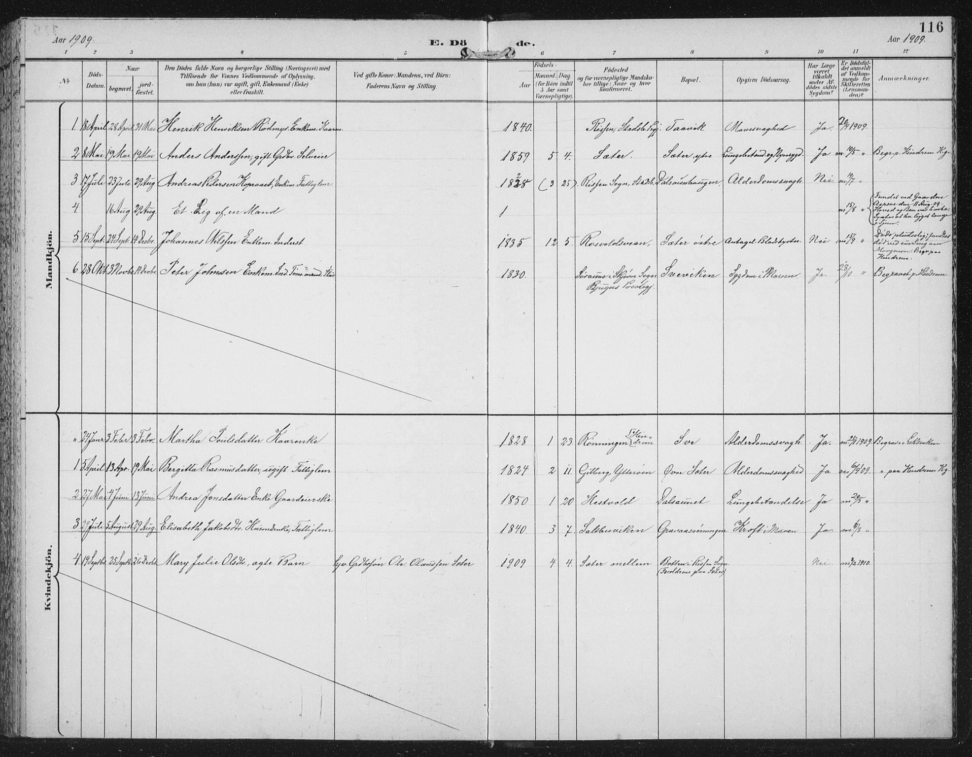SAT, Ministerialprotokoller, klokkerbøker og fødselsregistre - Nord-Trøndelag, 702/L0024: Ministerialbok nr. 702A02, 1898-1914, s. 116