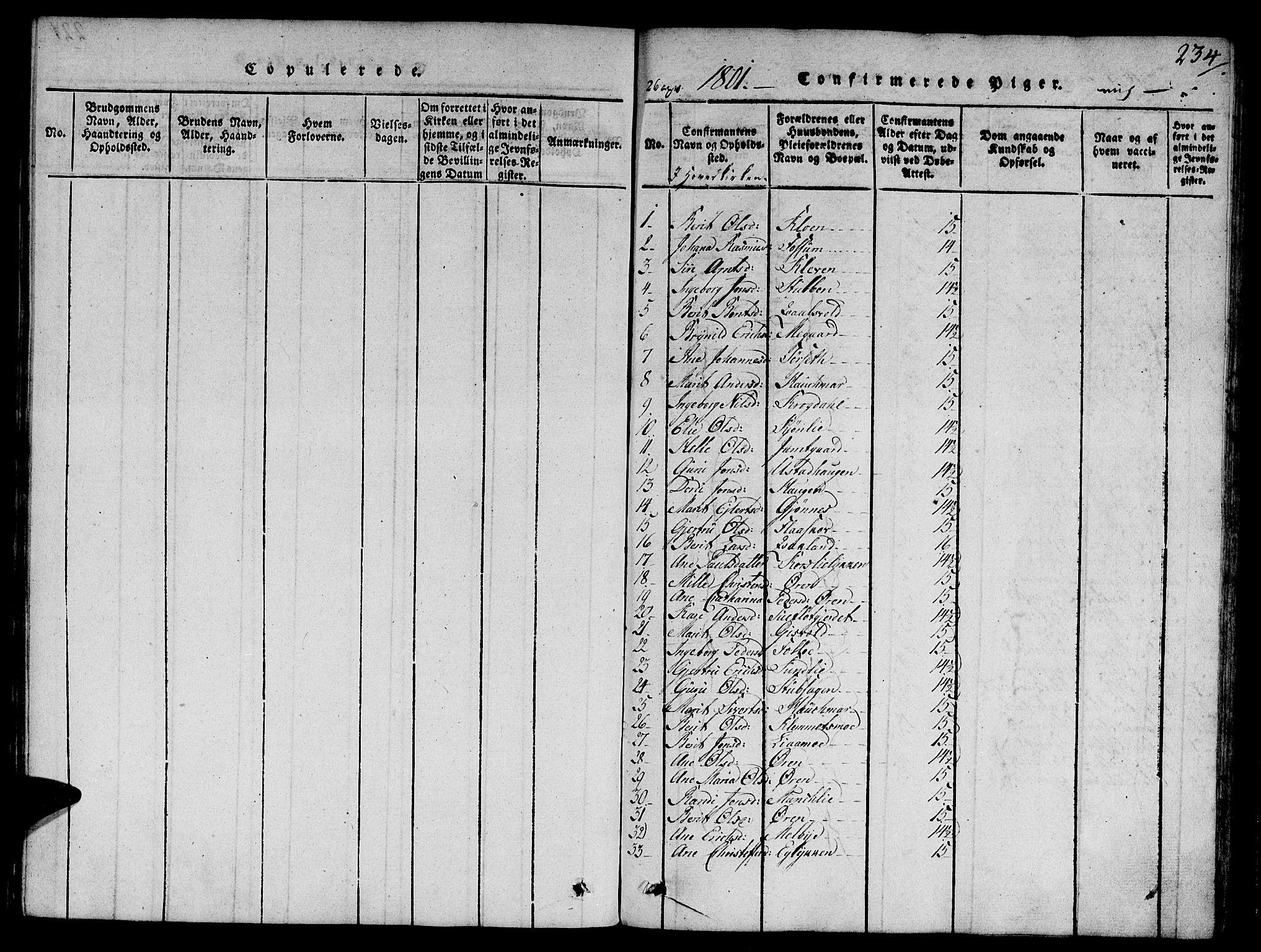 SAT, Ministerialprotokoller, klokkerbøker og fødselsregistre - Sør-Trøndelag, 668/L0803: Ministerialbok nr. 668A03, 1800-1826, s. 234