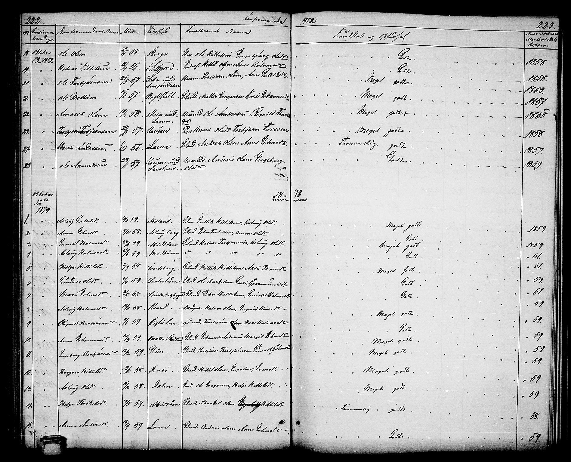 SAKO, Hjartdal kirkebøker, G/Ga/L0002: Klokkerbok nr. I 2, 1854-1888, s. 222-223