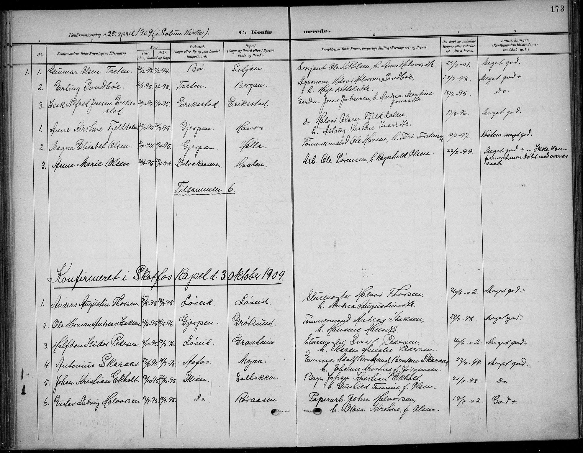 SAKO, Solum kirkebøker, F/Fb/L0003: Ministerialbok nr. II 3, 1901-1912, s. 173