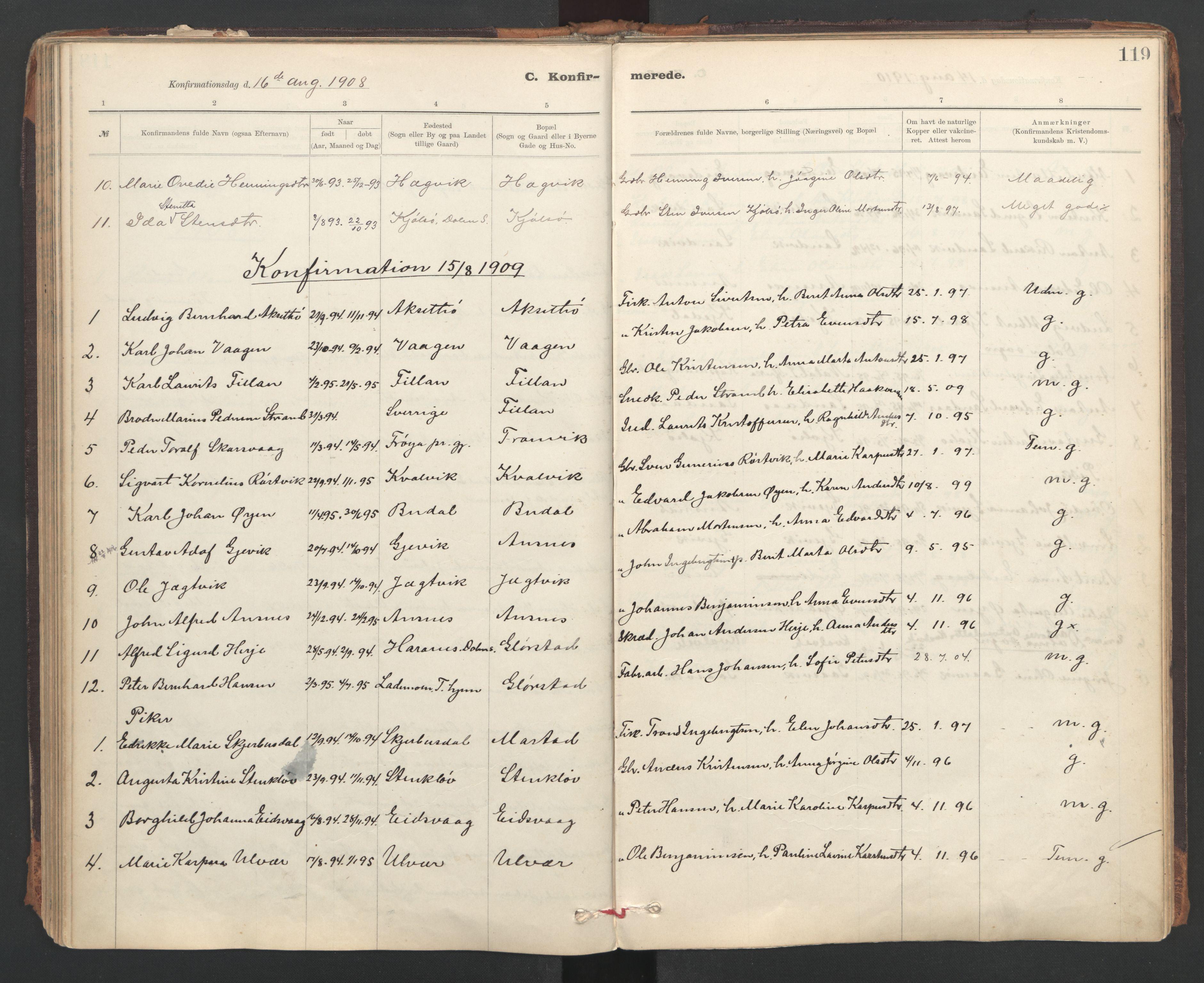 SAT, Ministerialprotokoller, klokkerbøker og fødselsregistre - Sør-Trøndelag, 637/L0559: Ministerialbok nr. 637A02, 1899-1923, s. 119