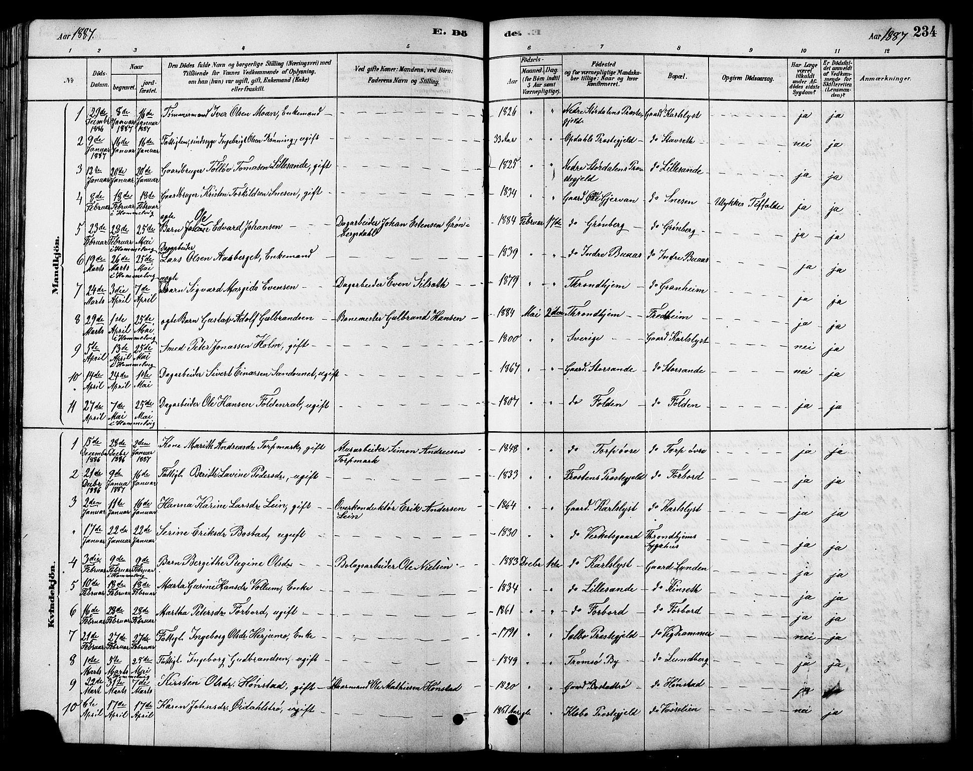 SAT, Ministerialprotokoller, klokkerbøker og fødselsregistre - Sør-Trøndelag, 616/L0423: Klokkerbok nr. 616C06, 1878-1903, s. 234