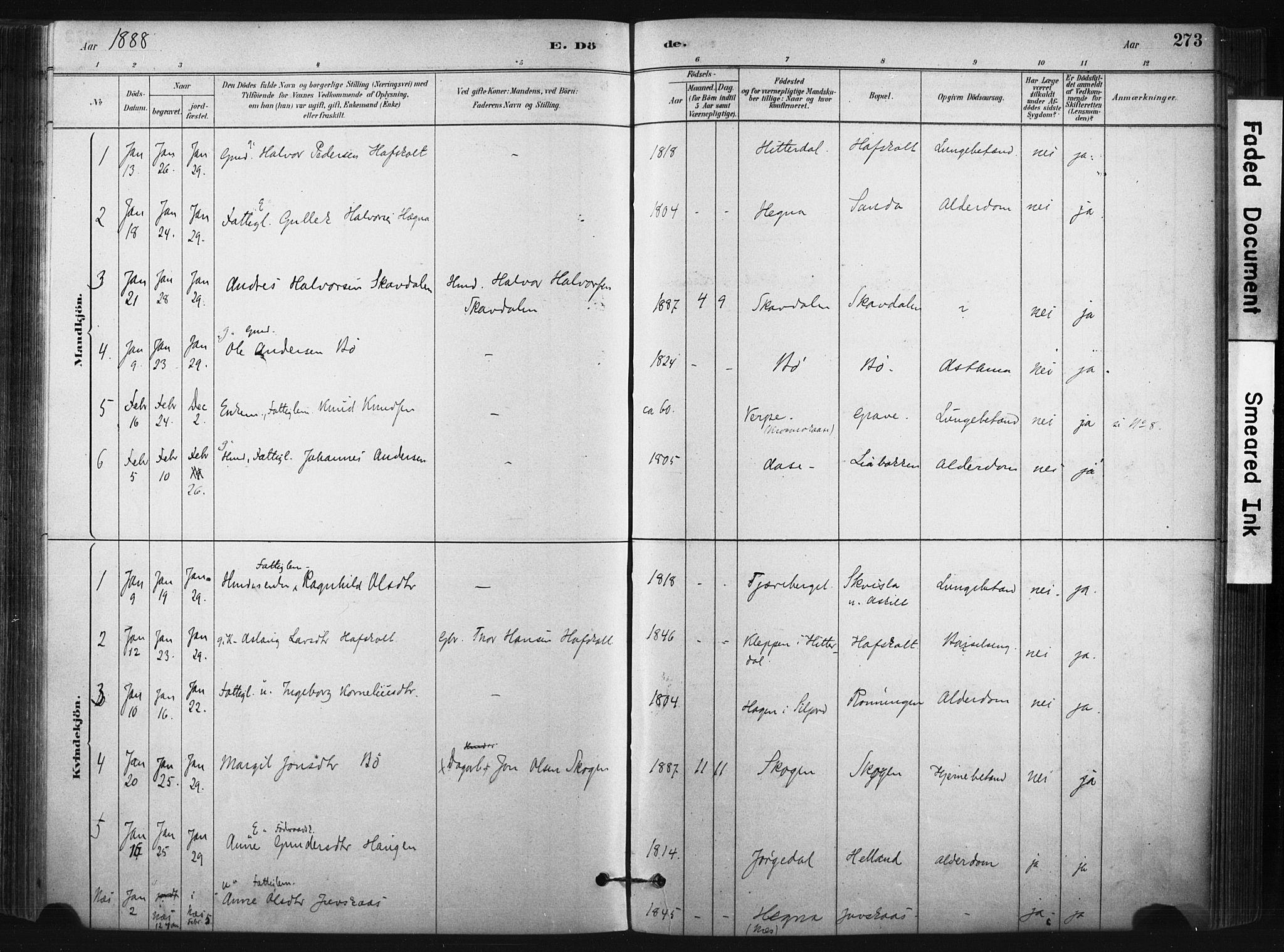 SAKO, Bø kirkebøker, F/Fa/L0010: Ministerialbok nr. 10, 1880-1892, s. 273