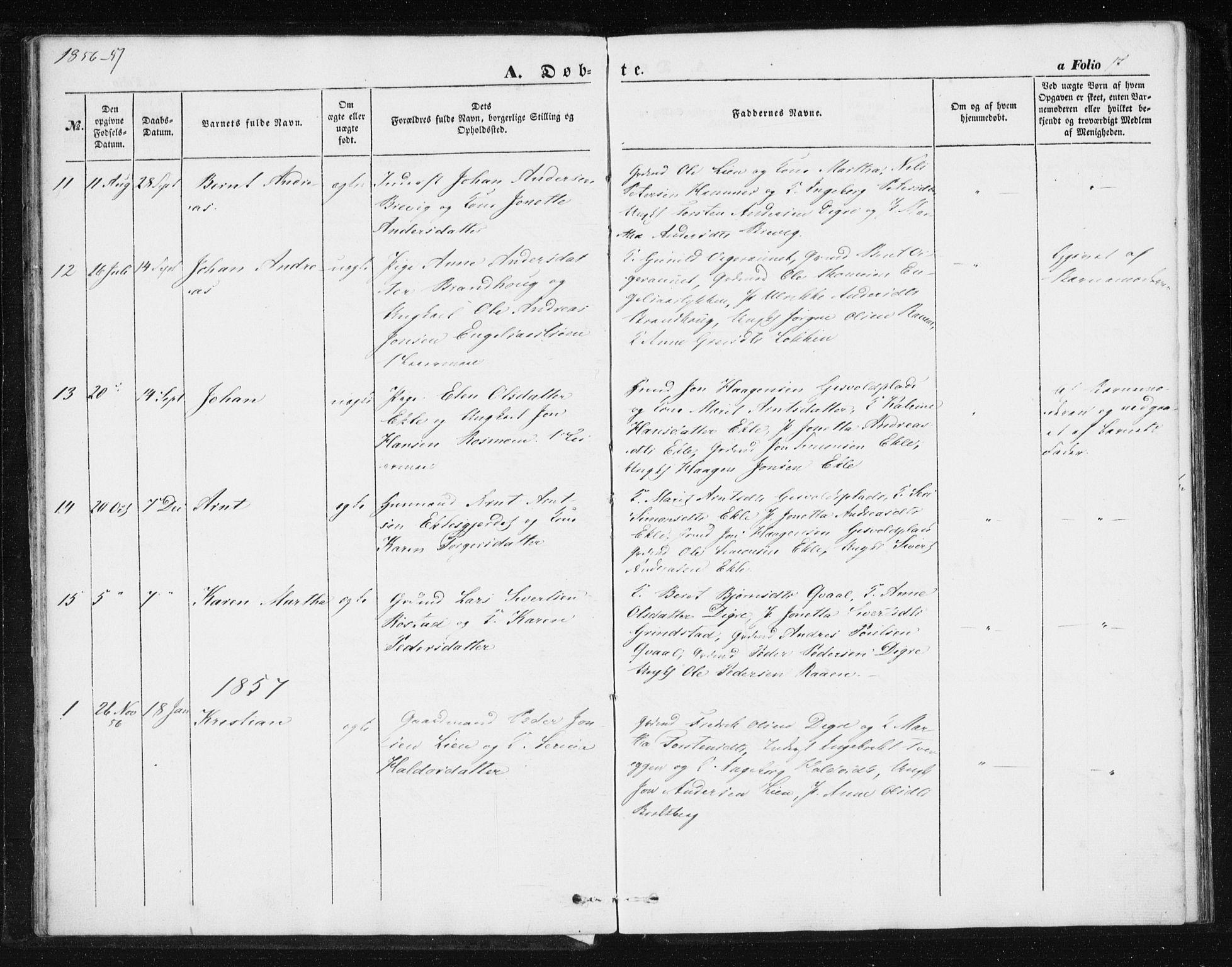 SAT, Ministerialprotokoller, klokkerbøker og fødselsregistre - Sør-Trøndelag, 608/L0332: Ministerialbok nr. 608A01, 1848-1861, s. 17