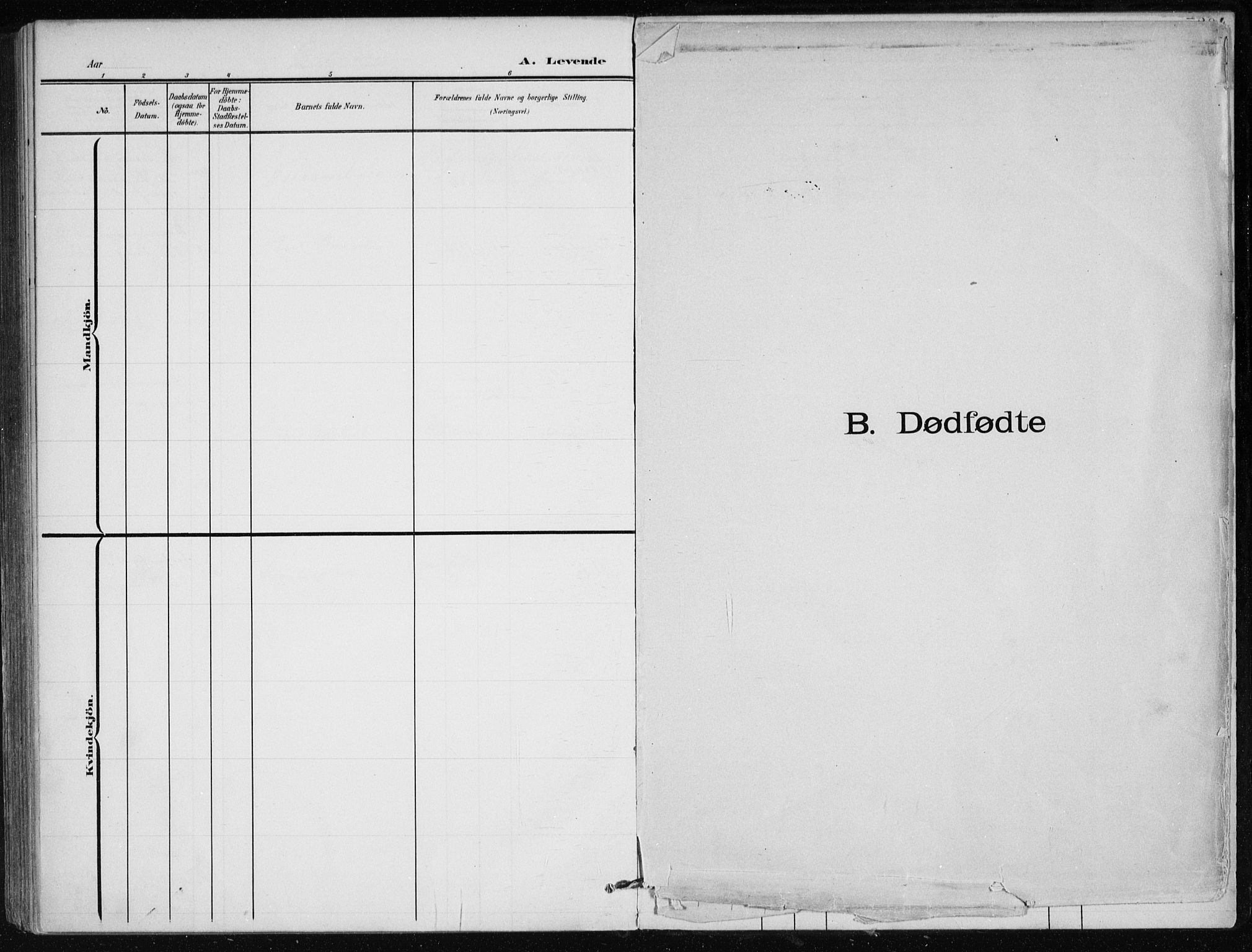 SAT, Ministerialprotokoller, klokkerbøker og fødselsregistre - Nordland, 866/L0941: Ministerialbok nr. 866A04, 1901-1917