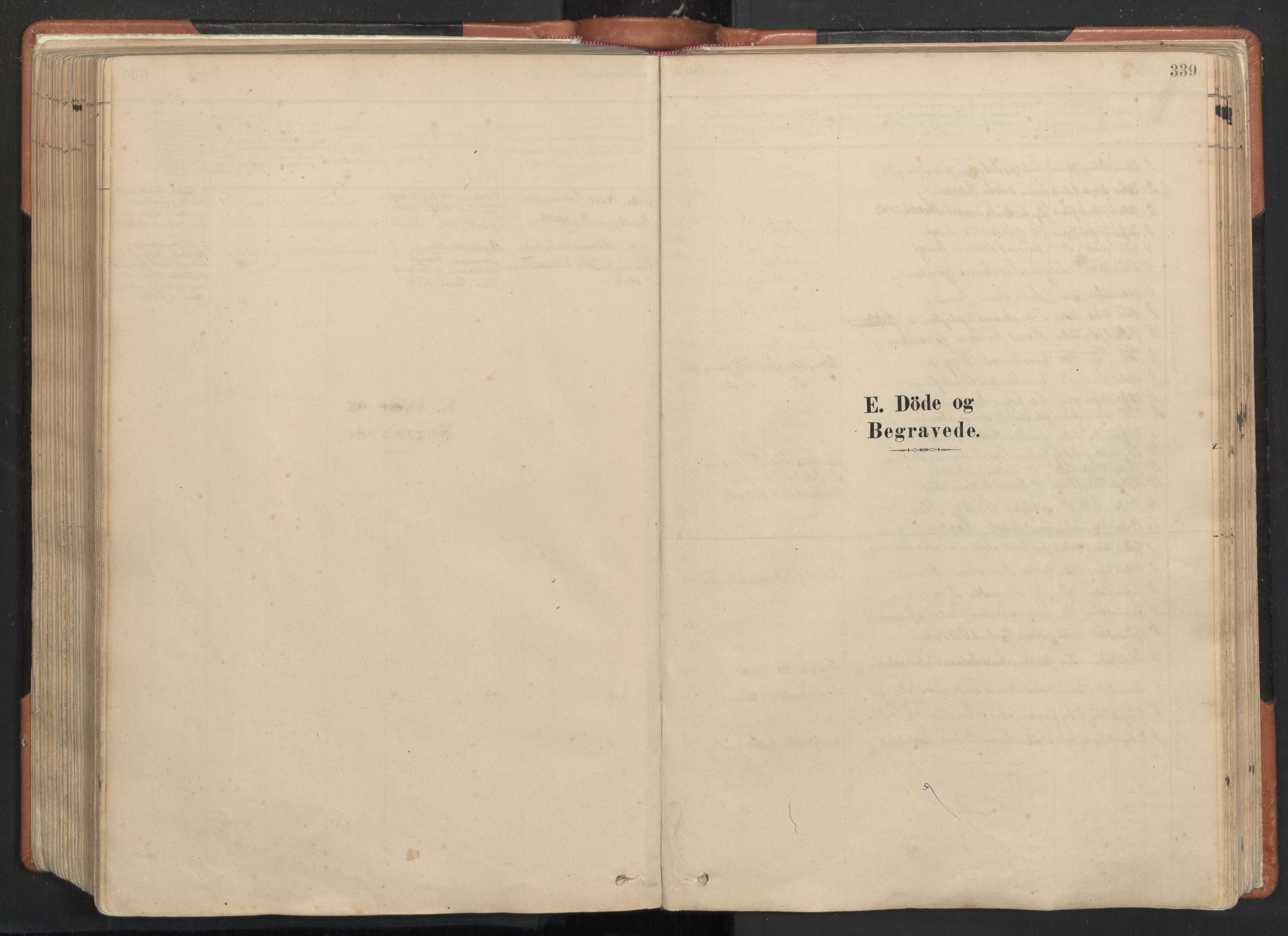 SAT, Ministerialprotokoller, klokkerbøker og fødselsregistre - Nordland, 817/L0264: Ministerialbok nr. 817A04, 1878-1907, s. 339
