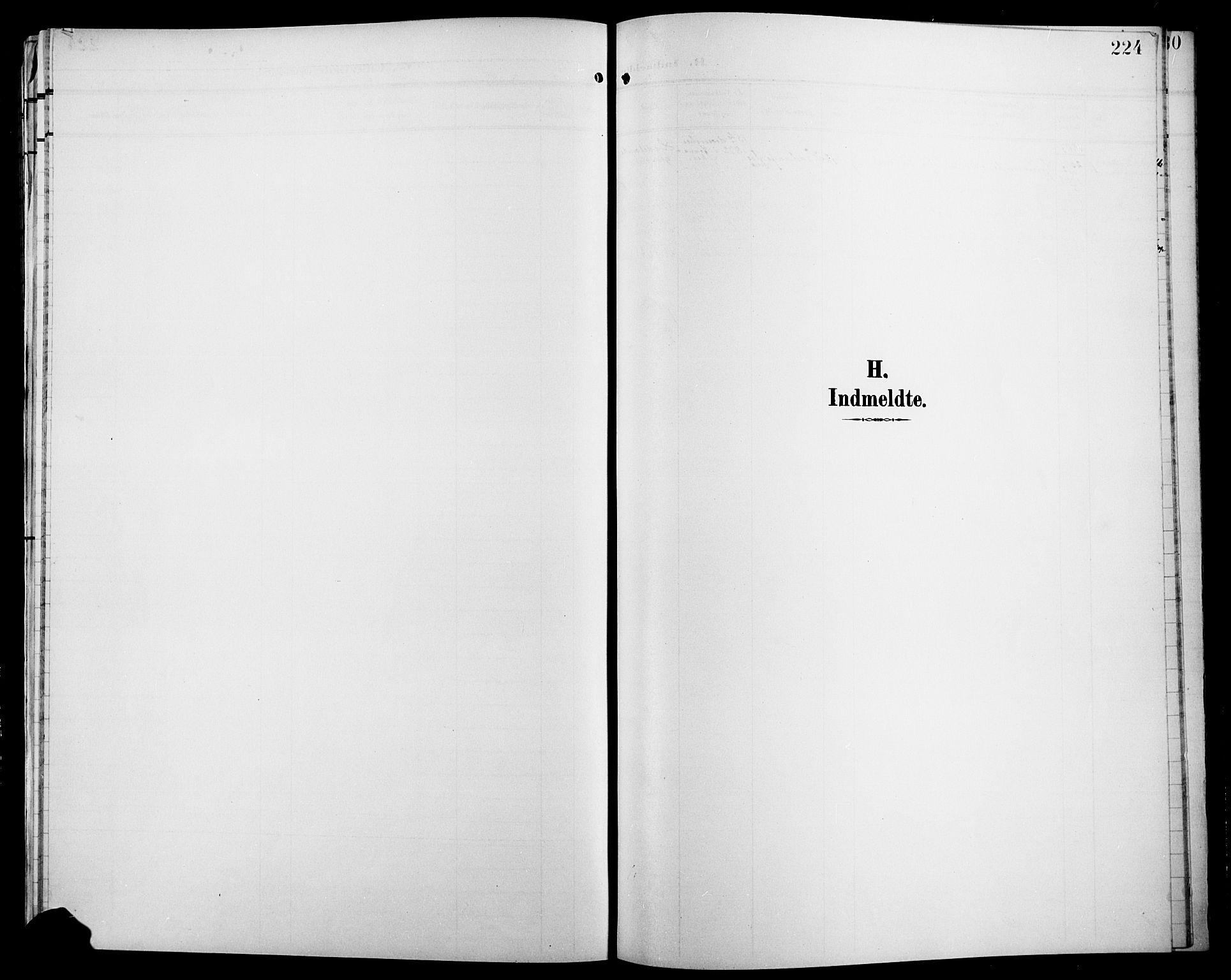 SAH, Jevnaker prestekontor, Klokkerbok nr. 4, 1907-1918, s. 224