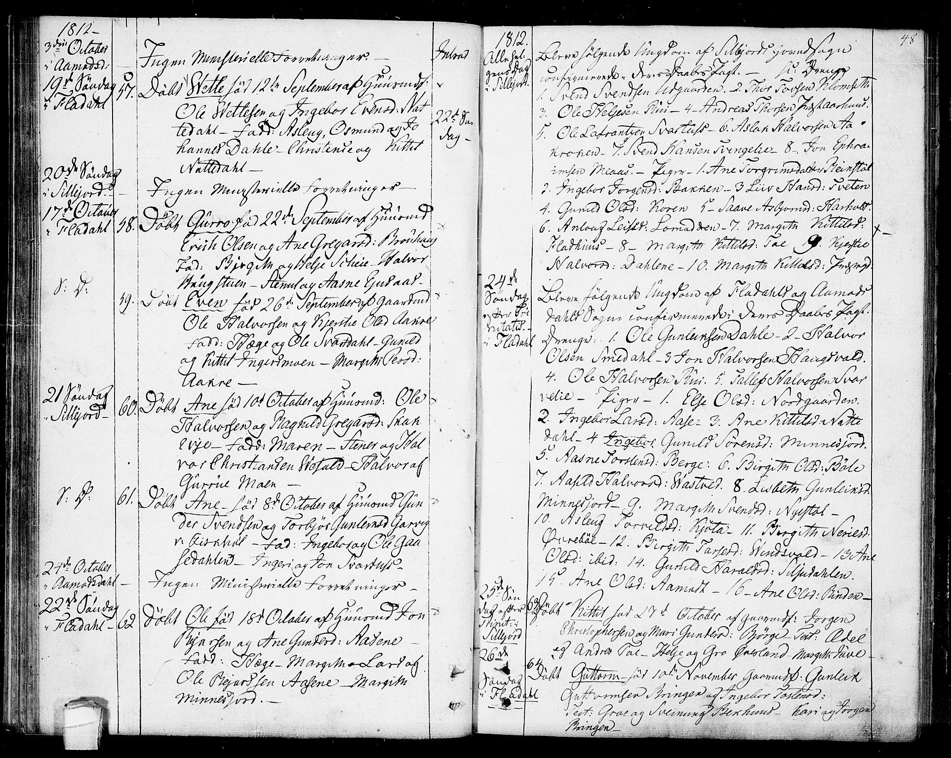 SAKO, Seljord kirkebøker, F/Fa/L0009: Ministerialbok nr. I 9, 1801-1814, s. 48
