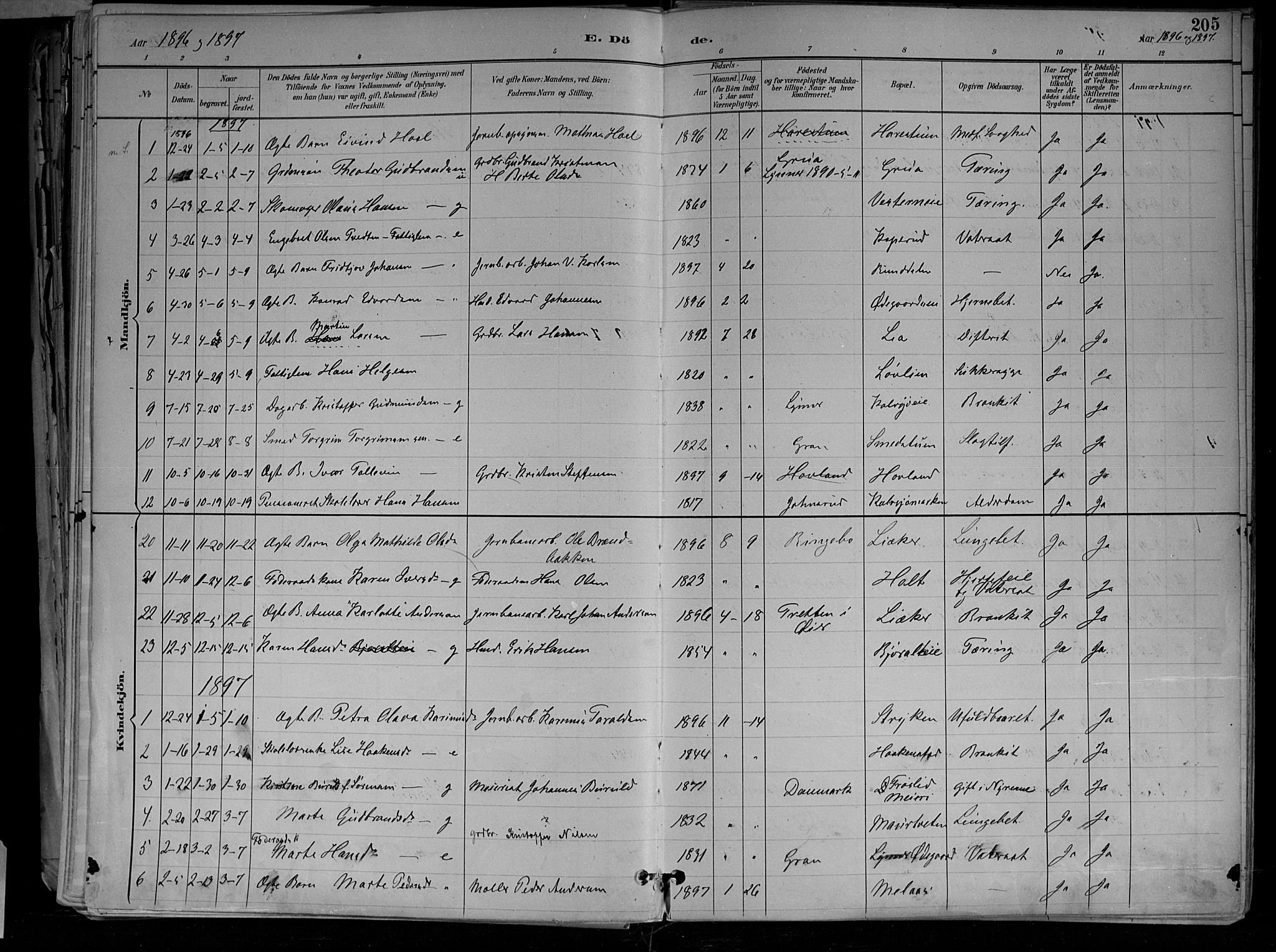 SAH, Jevnaker prestekontor, Ministerialbok nr. 10, 1891-1906, s. 205
