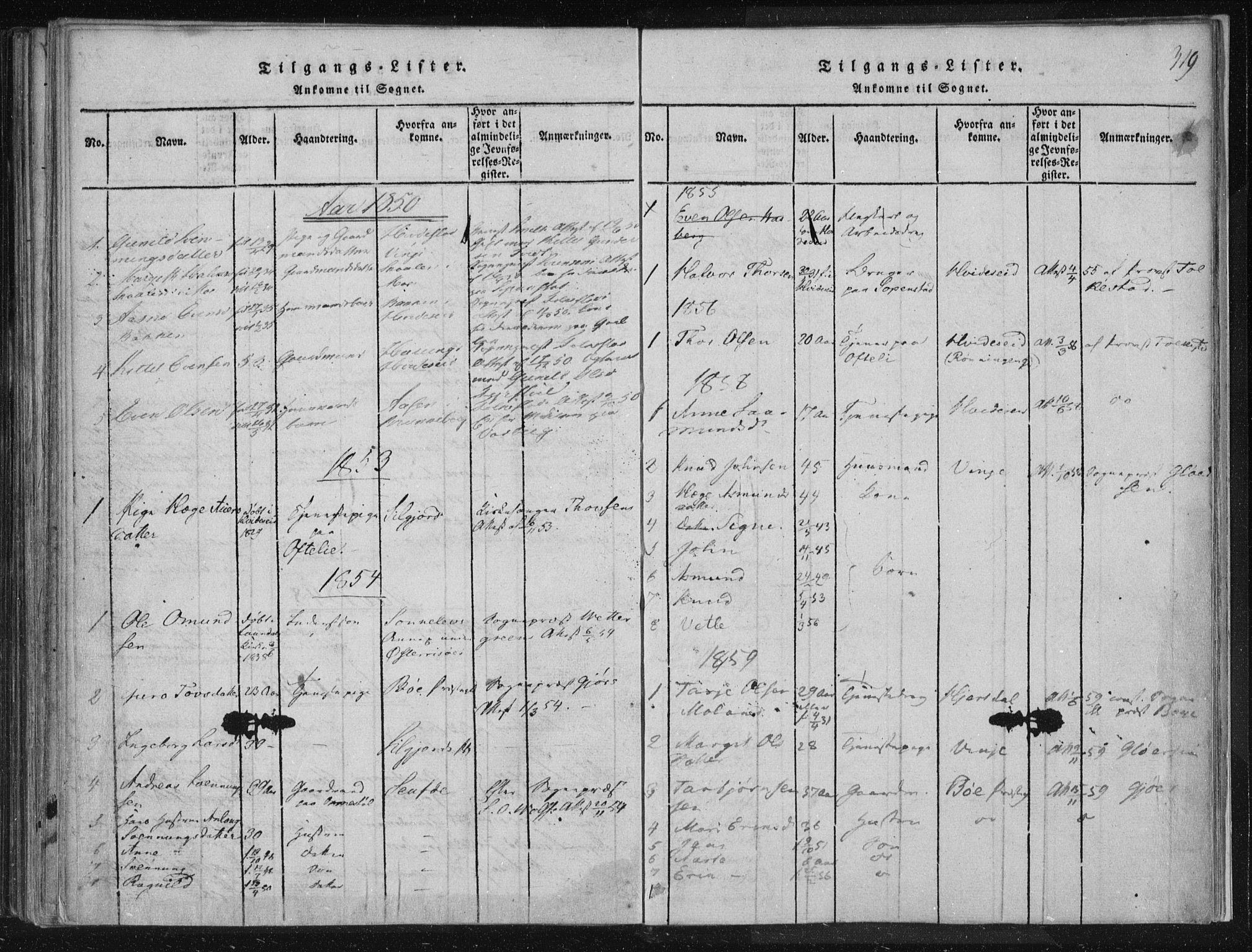SAKO, Lårdal kirkebøker, F/Fc/L0001: Ministerialbok nr. III 1, 1815-1860, s. 319