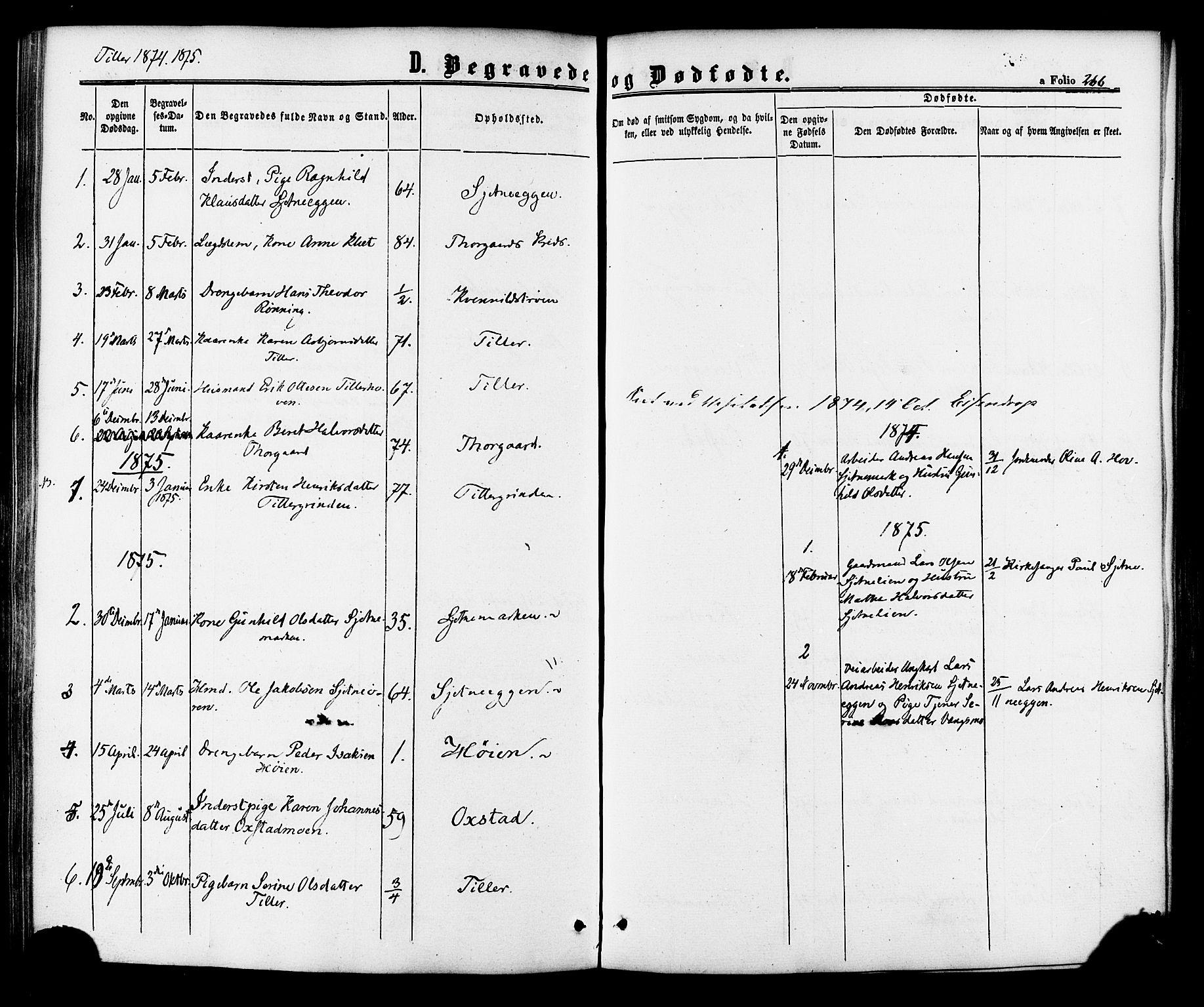 SAT, Ministerialprotokoller, klokkerbøker og fødselsregistre - Sør-Trøndelag, 618/L0443: Ministerialbok nr. 618A06 /2, 1863-1879, s. 266