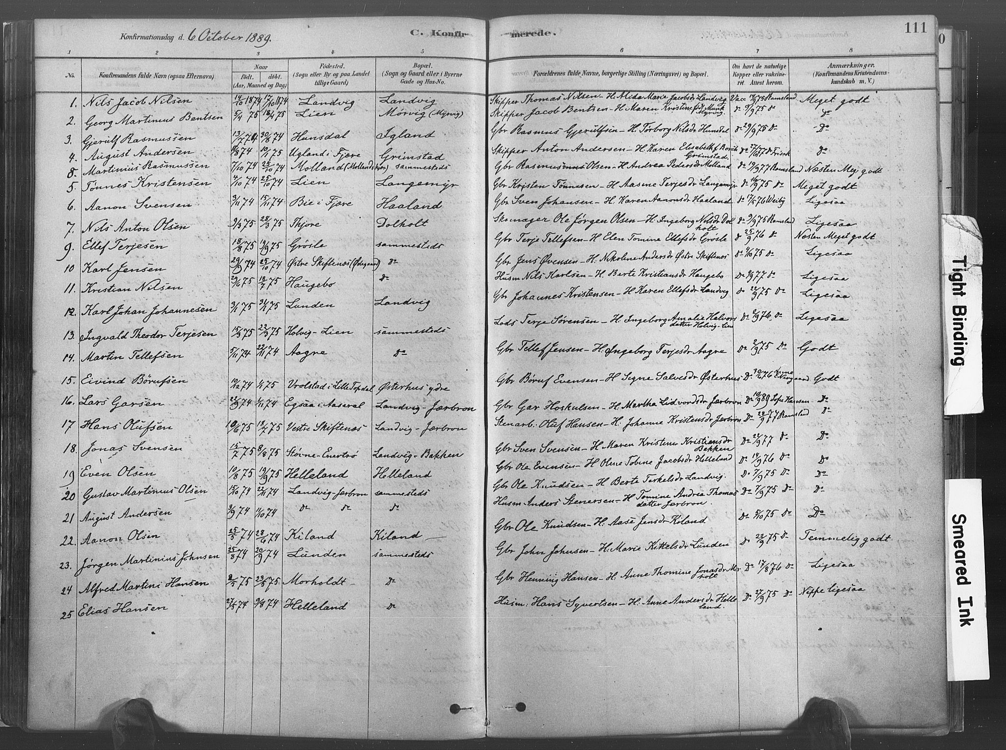 SAK, Hommedal sokneprestkontor, F/Fa/Fab/L0006: Ministerialbok nr. A 6, 1878-1897, s. 111