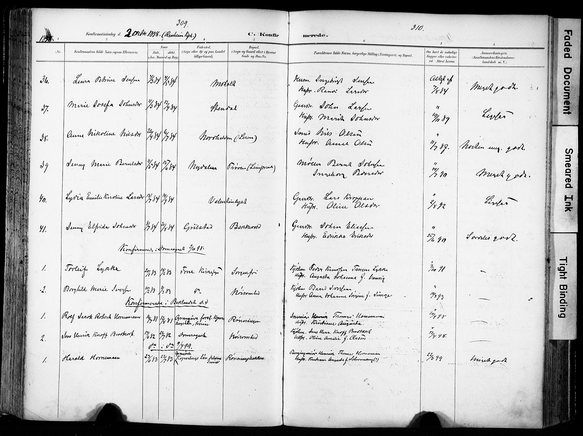 SAT, Ministerialprotokoller, klokkerbøker og fødselsregistre - Sør-Trøndelag, 606/L0301: Ministerialbok nr. 606A16, 1894-1907, s. 309-310