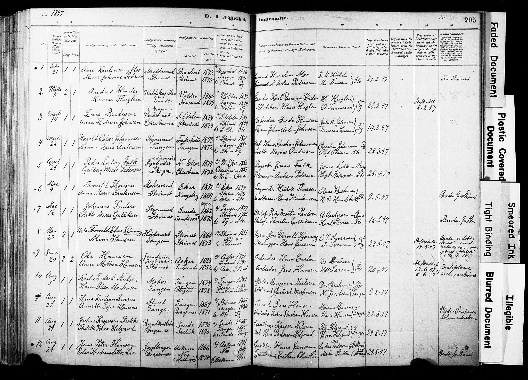 SAKO, Strømsø kirkebøker, F/Fb/L0006: Ministerialbok nr. II 6, 1879-1910, s. 205