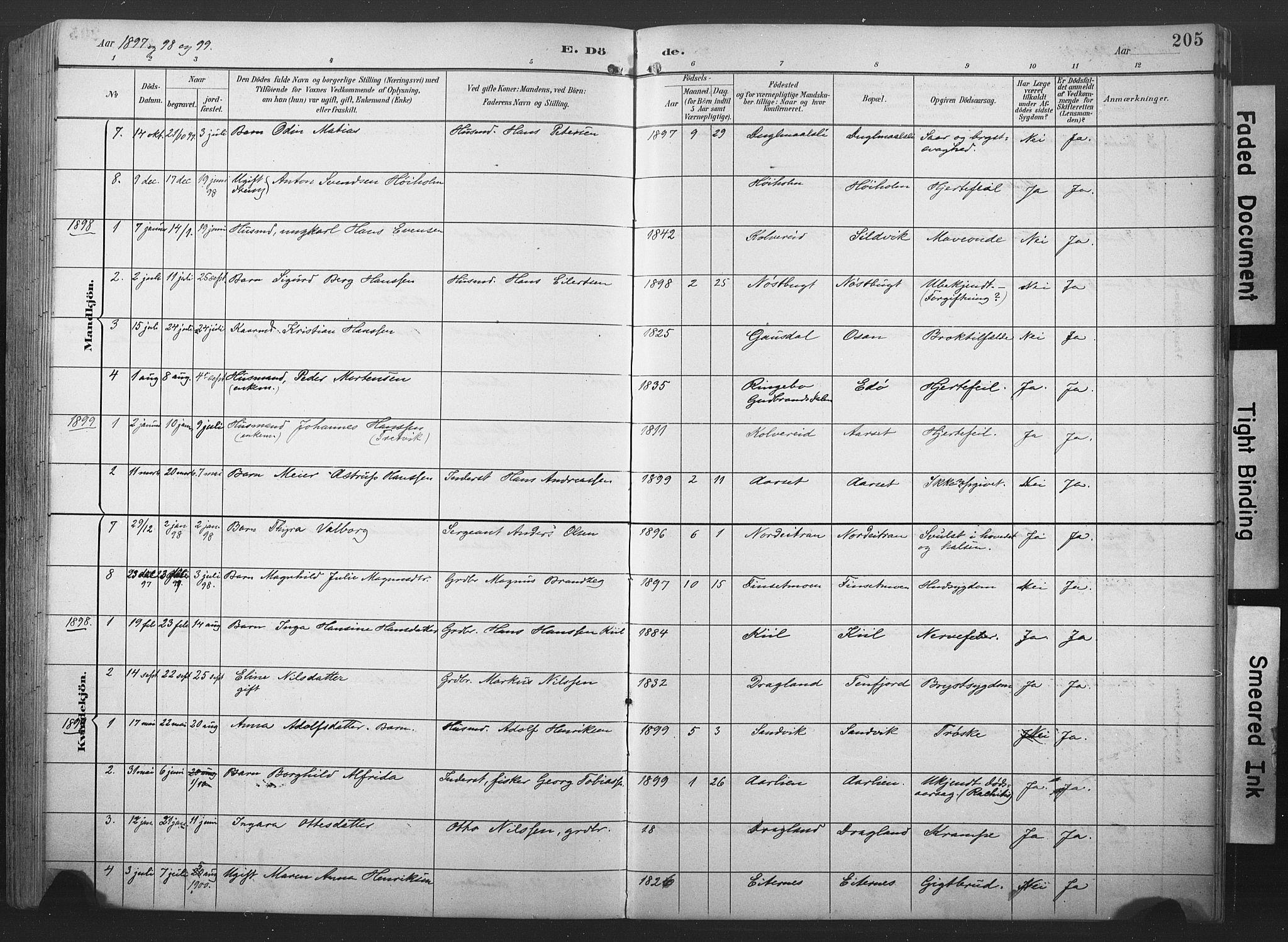 SAT, Ministerialprotokoller, klokkerbøker og fødselsregistre - Nord-Trøndelag, 789/L0706: Klokkerbok nr. 789C01, 1888-1931, s. 205