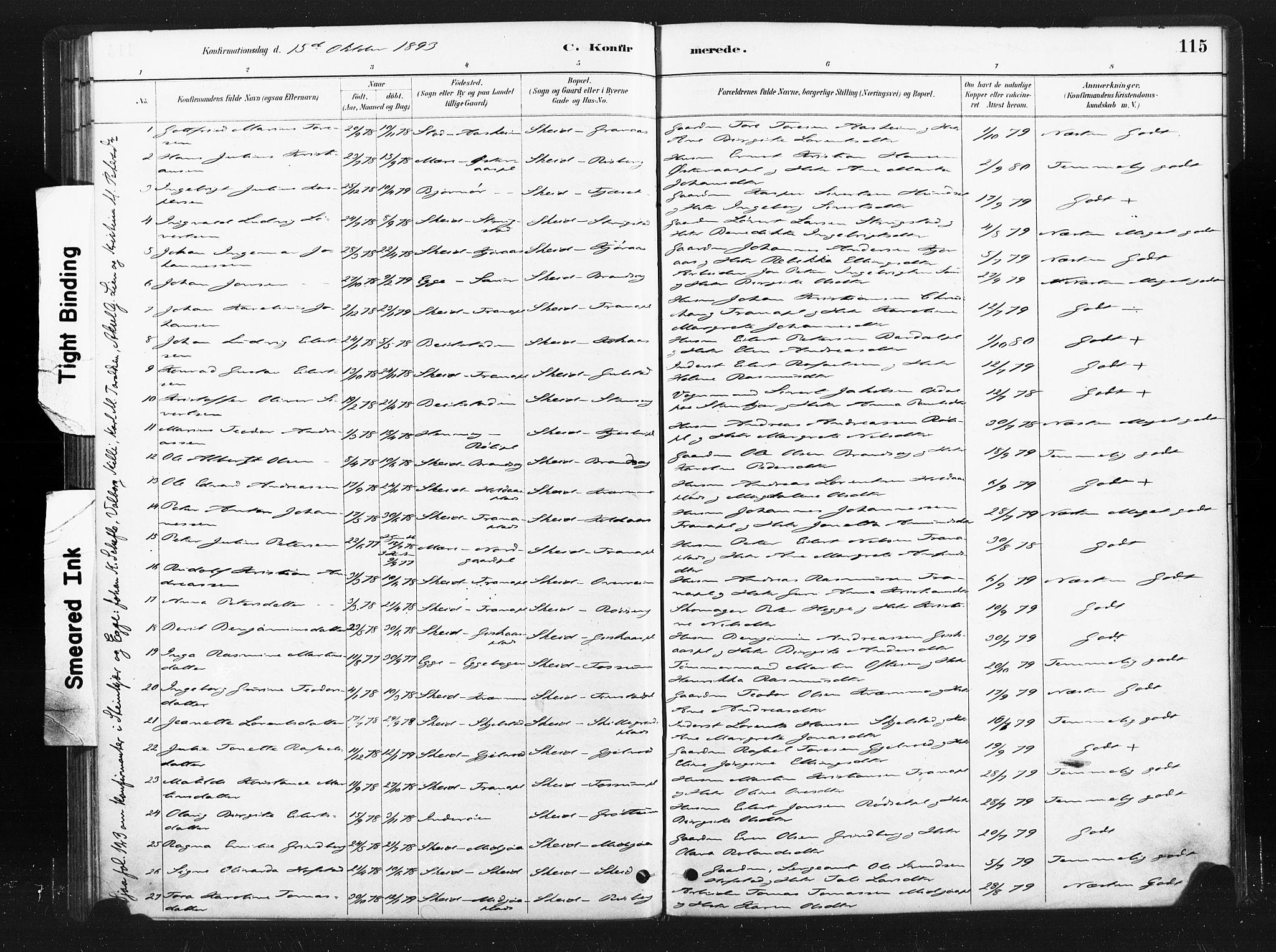 SAT, Ministerialprotokoller, klokkerbøker og fødselsregistre - Nord-Trøndelag, 736/L0361: Ministerialbok nr. 736A01, 1884-1906, s. 115