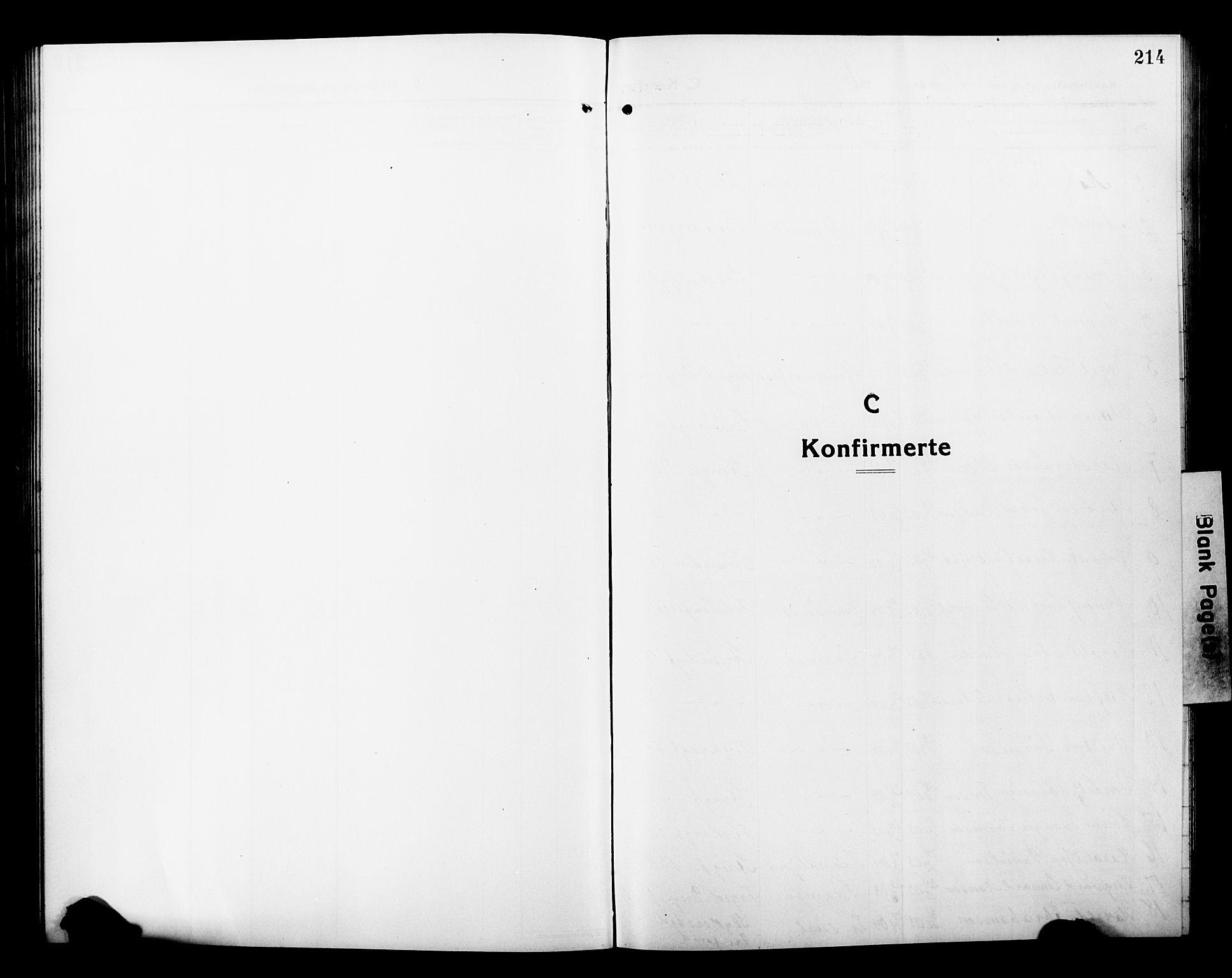 SATØ, Tromsø sokneprestkontor/stiftsprosti/domprosti, G/Gb/L0009klokker: Klokkerbok nr. 9, 1915-1925, s. 214