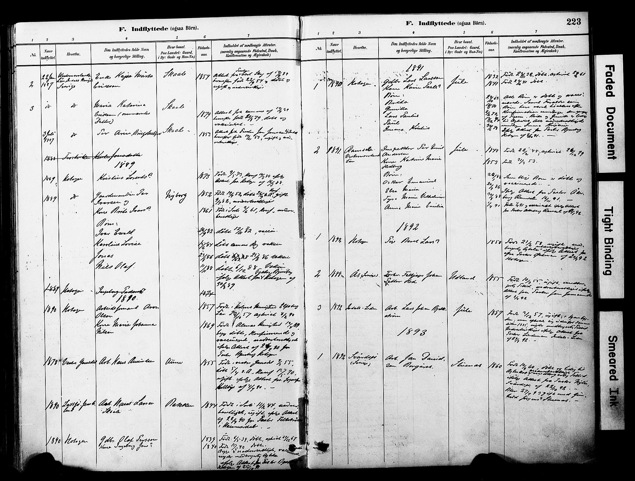 SAT, Ministerialprotokoller, klokkerbøker og fødselsregistre - Nord-Trøndelag, 757/L0505: Ministerialbok nr. 757A01, 1882-1904, s. 223