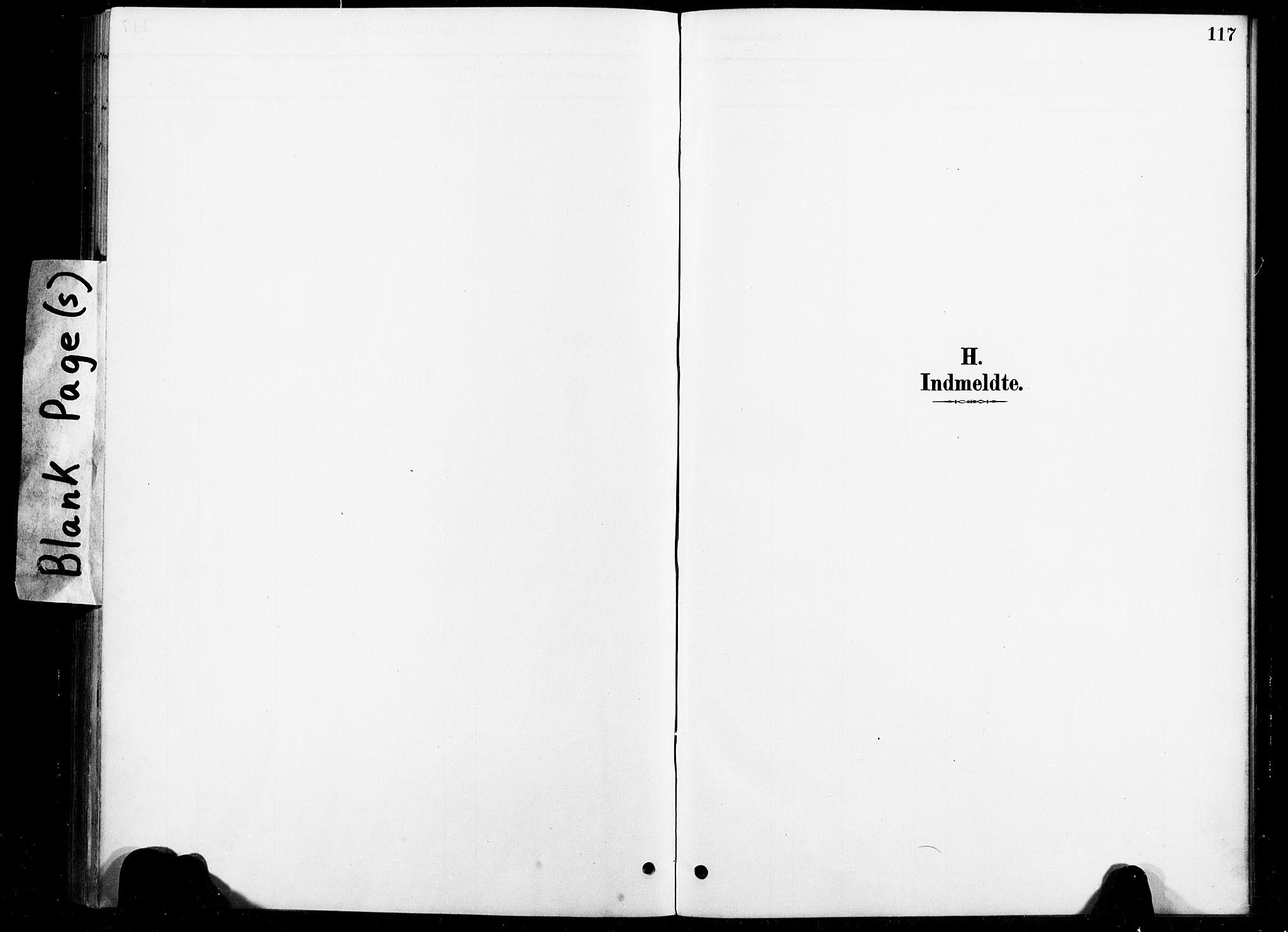 SAT, Ministerialprotokoller, klokkerbøker og fødselsregistre - Nord-Trøndelag, 738/L0364: Ministerialbok nr. 738A01, 1884-1902, s. 117