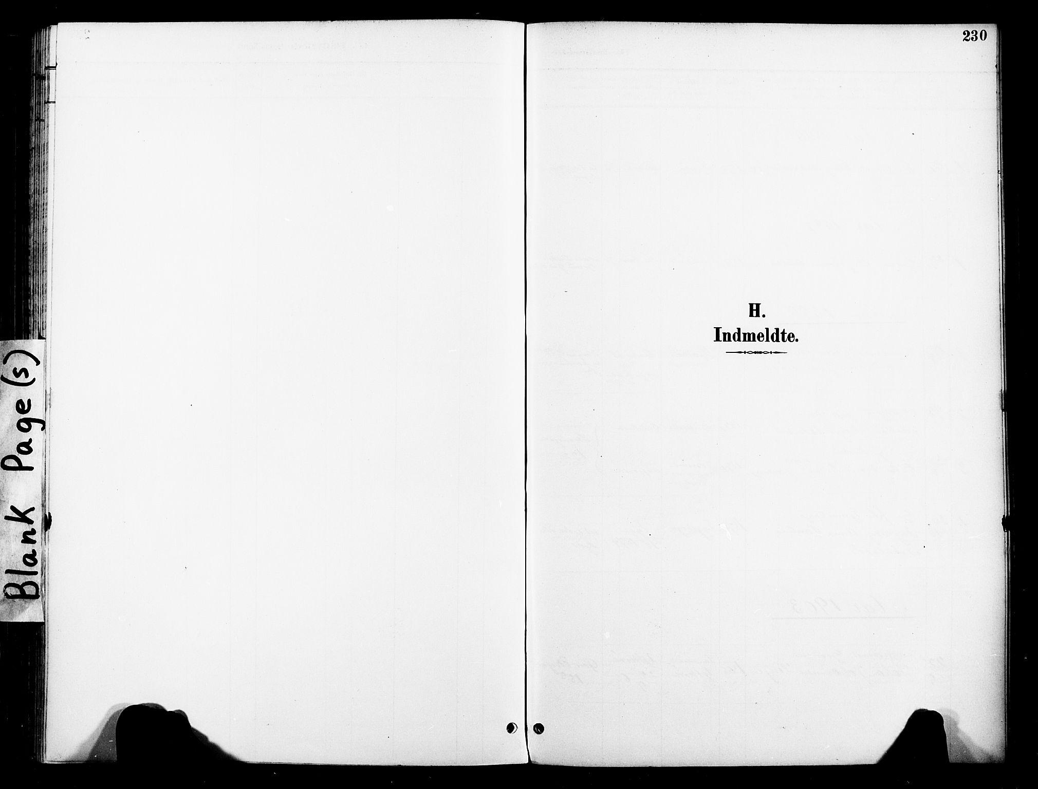 SAT, Ministerialprotokoller, klokkerbøker og fødselsregistre - Nord-Trøndelag, 739/L0372: Ministerialbok nr. 739A04, 1895-1903, s. 230