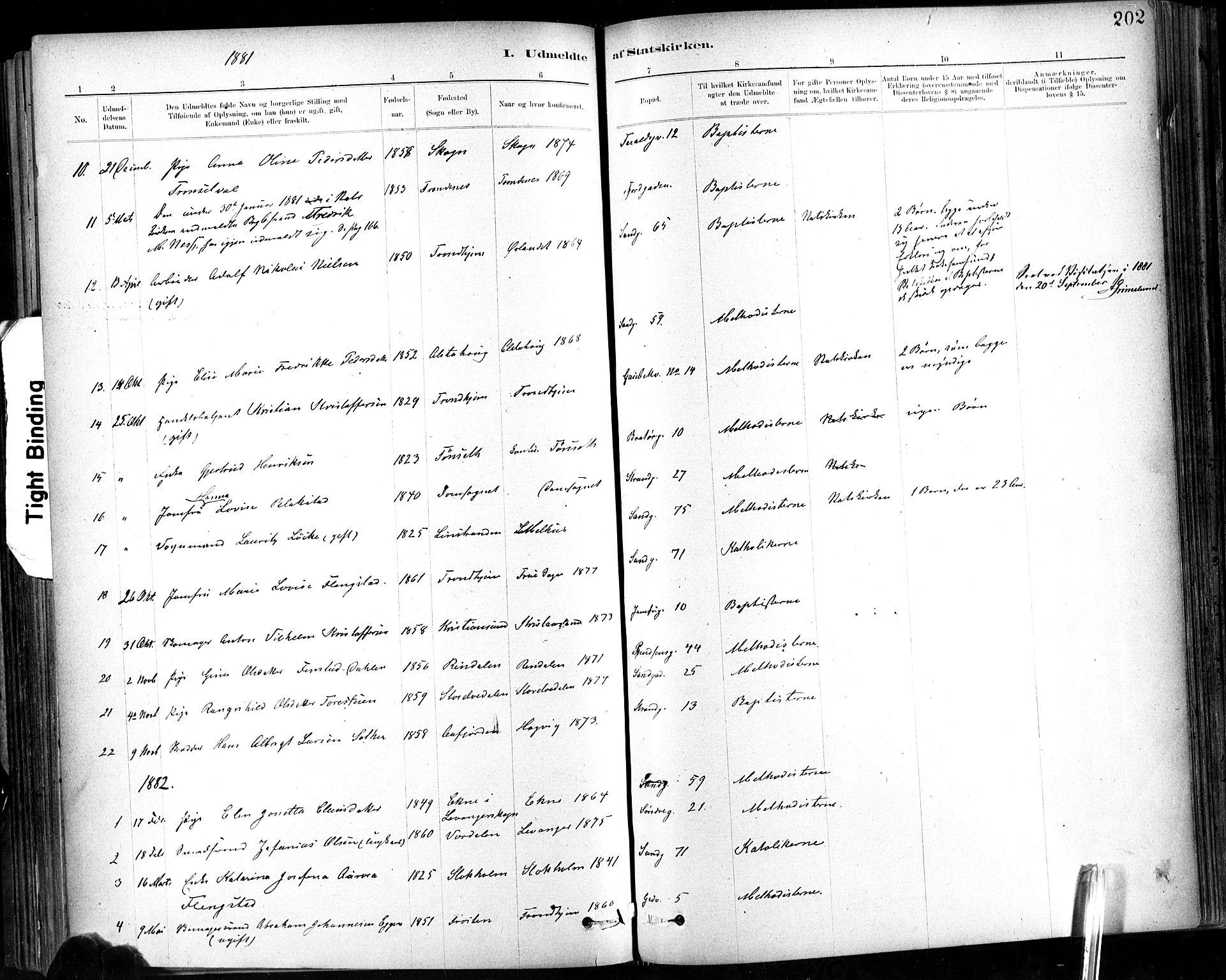 SAT, Ministerialprotokoller, klokkerbøker og fødselsregistre - Sør-Trøndelag, 602/L0120: Ministerialbok nr. 602A18, 1880-1913, s. 202