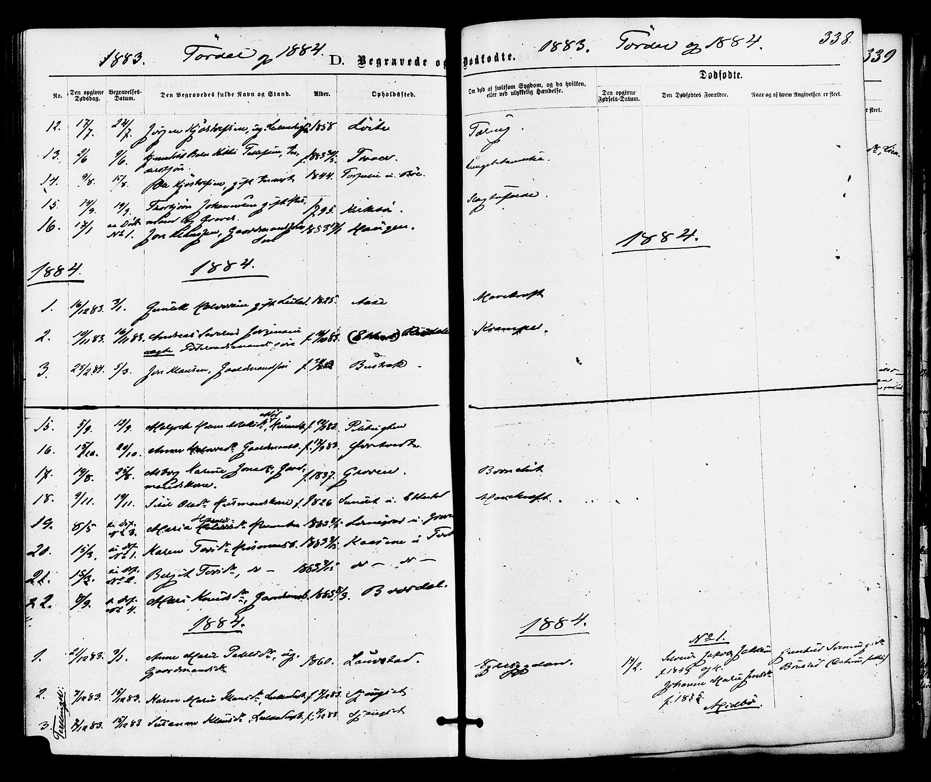 SAKO, Drangedal kirkebøker, F/Fa/L0009: Ministerialbok nr. 9 /2, 1872-1884, s. 338