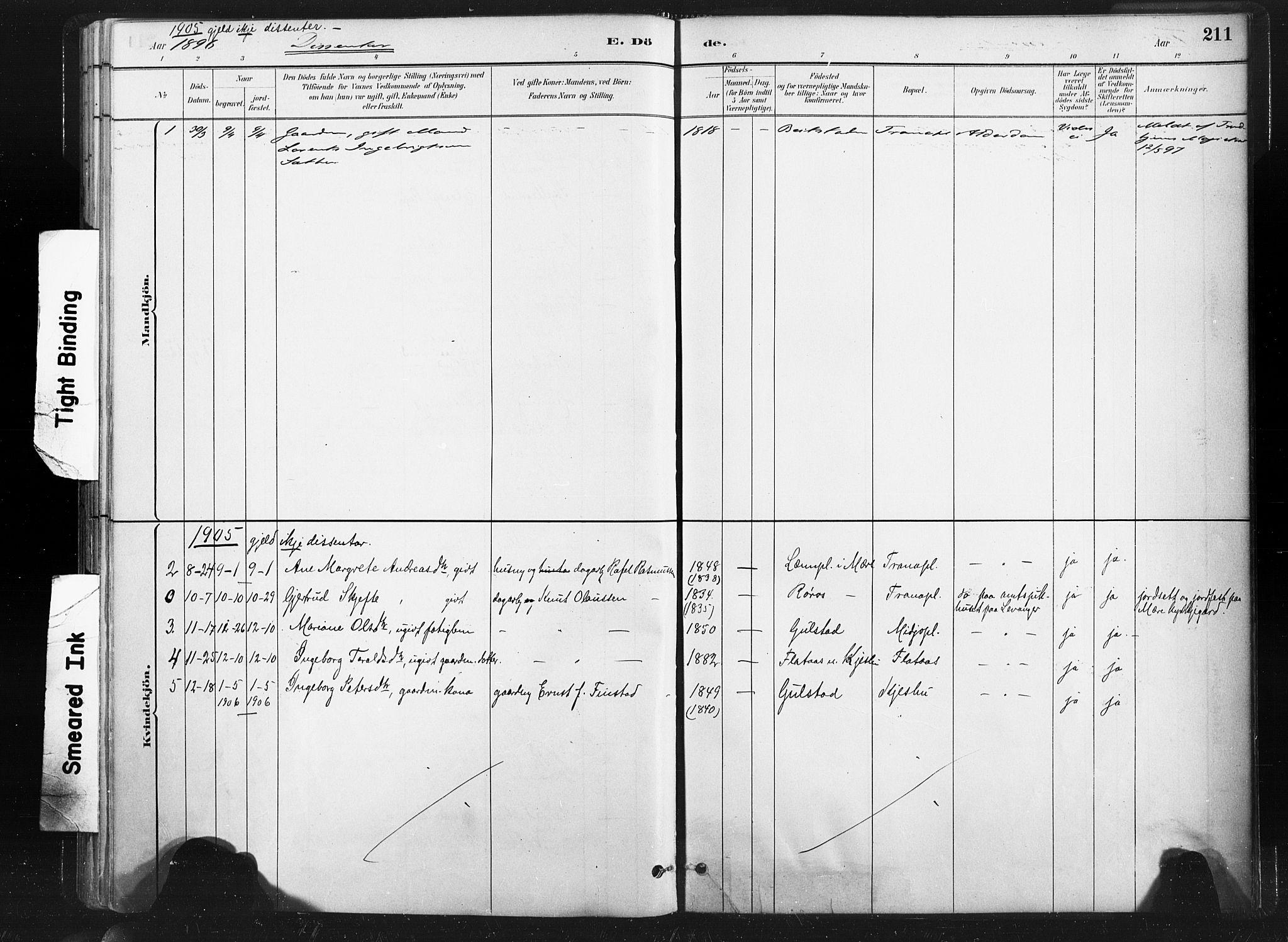 SAT, Ministerialprotokoller, klokkerbøker og fødselsregistre - Nord-Trøndelag, 736/L0361: Ministerialbok nr. 736A01, 1884-1906, s. 211