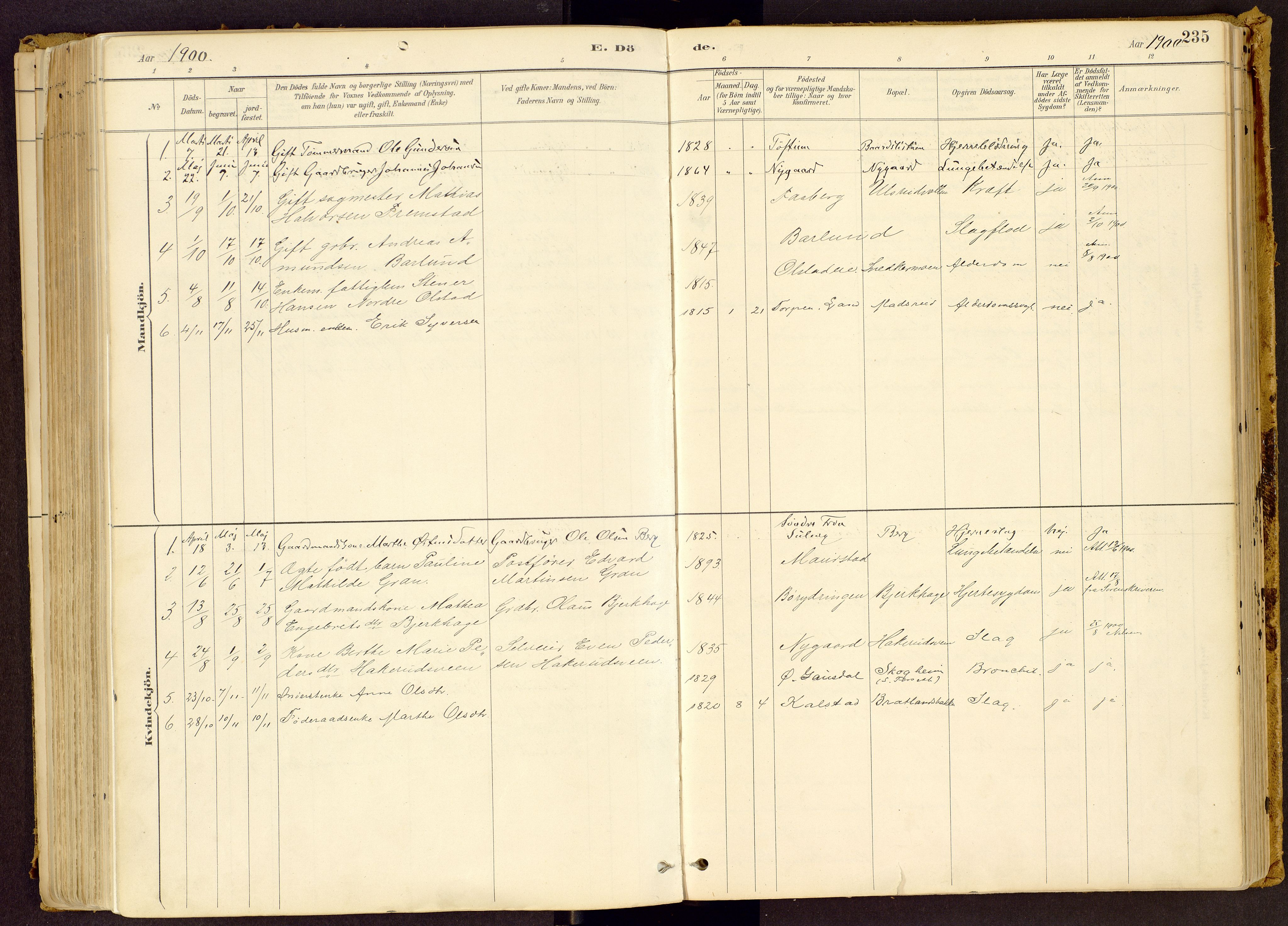 SAH, Vestre Gausdal prestekontor, Ministerialbok nr. 1, 1887-1914, s. 235