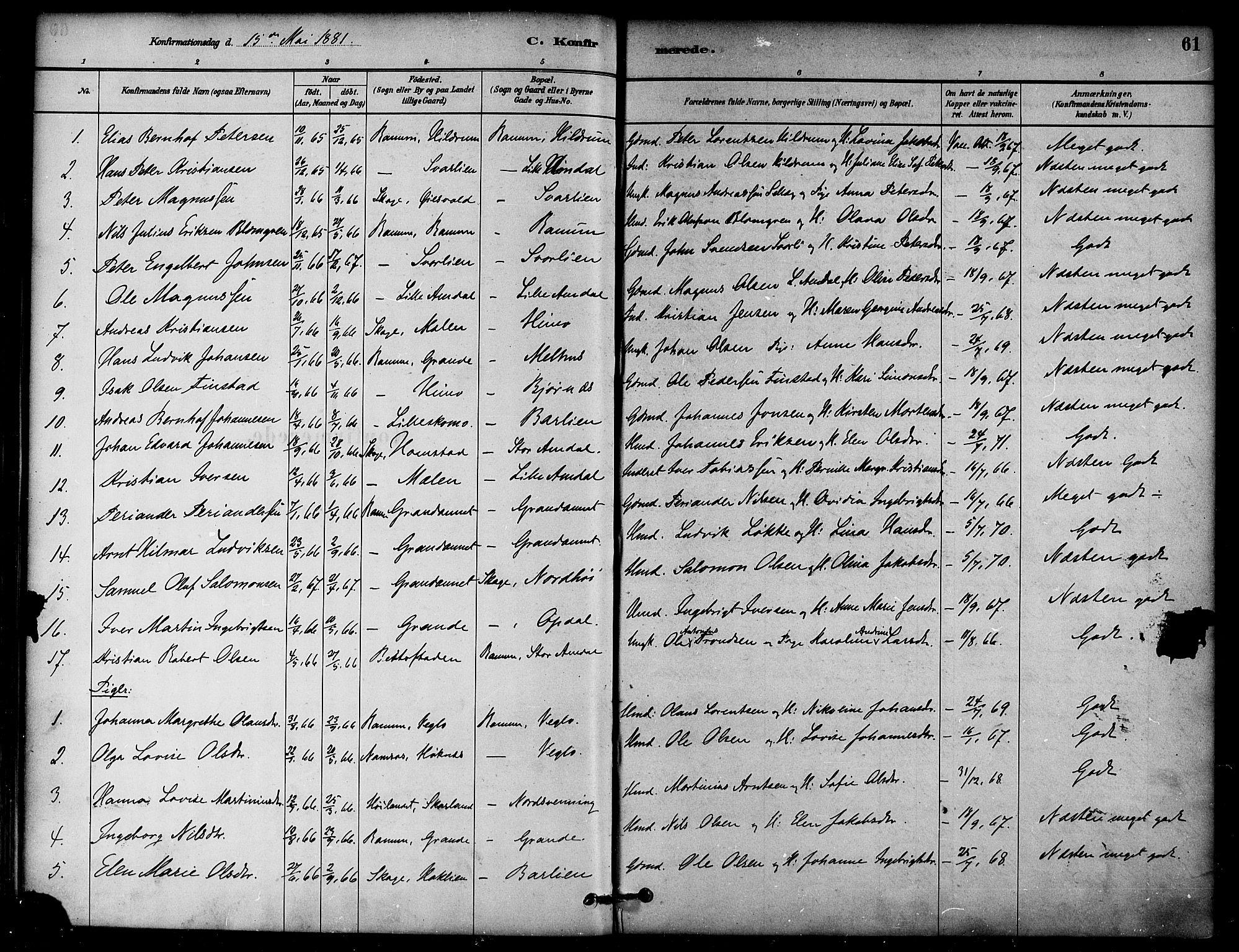 SAT, Ministerialprotokoller, klokkerbøker og fødselsregistre - Nord-Trøndelag, 764/L0555: Ministerialbok nr. 764A10, 1881-1896, s. 61