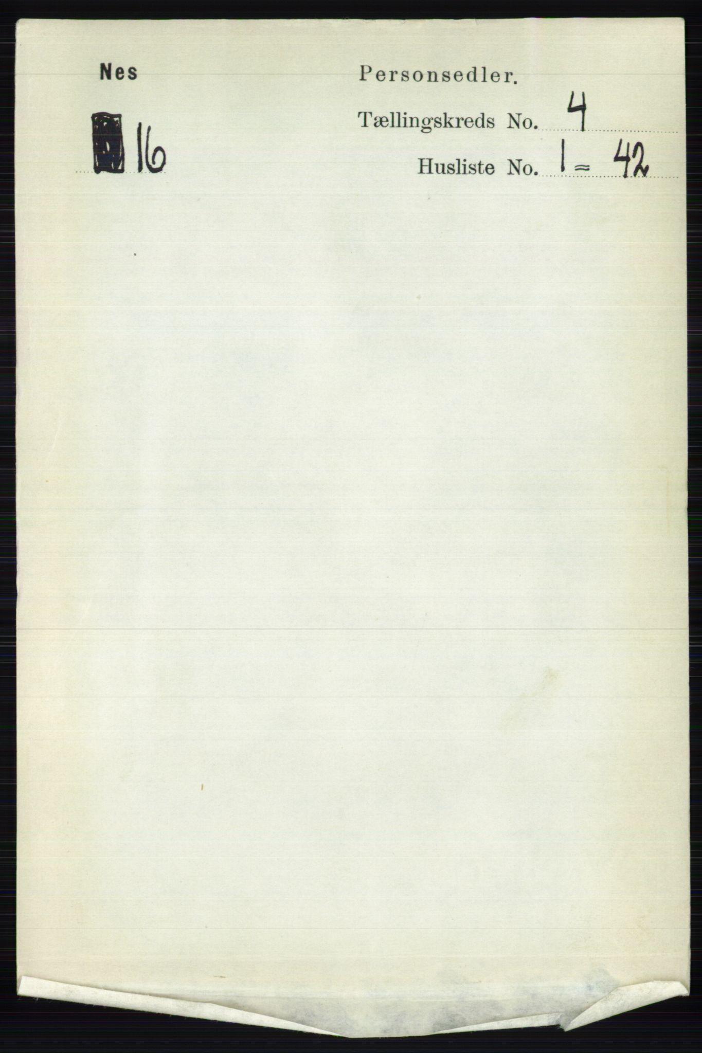 RA, Folketelling 1891 for 0411 Nes herred, 1891, s. 2043