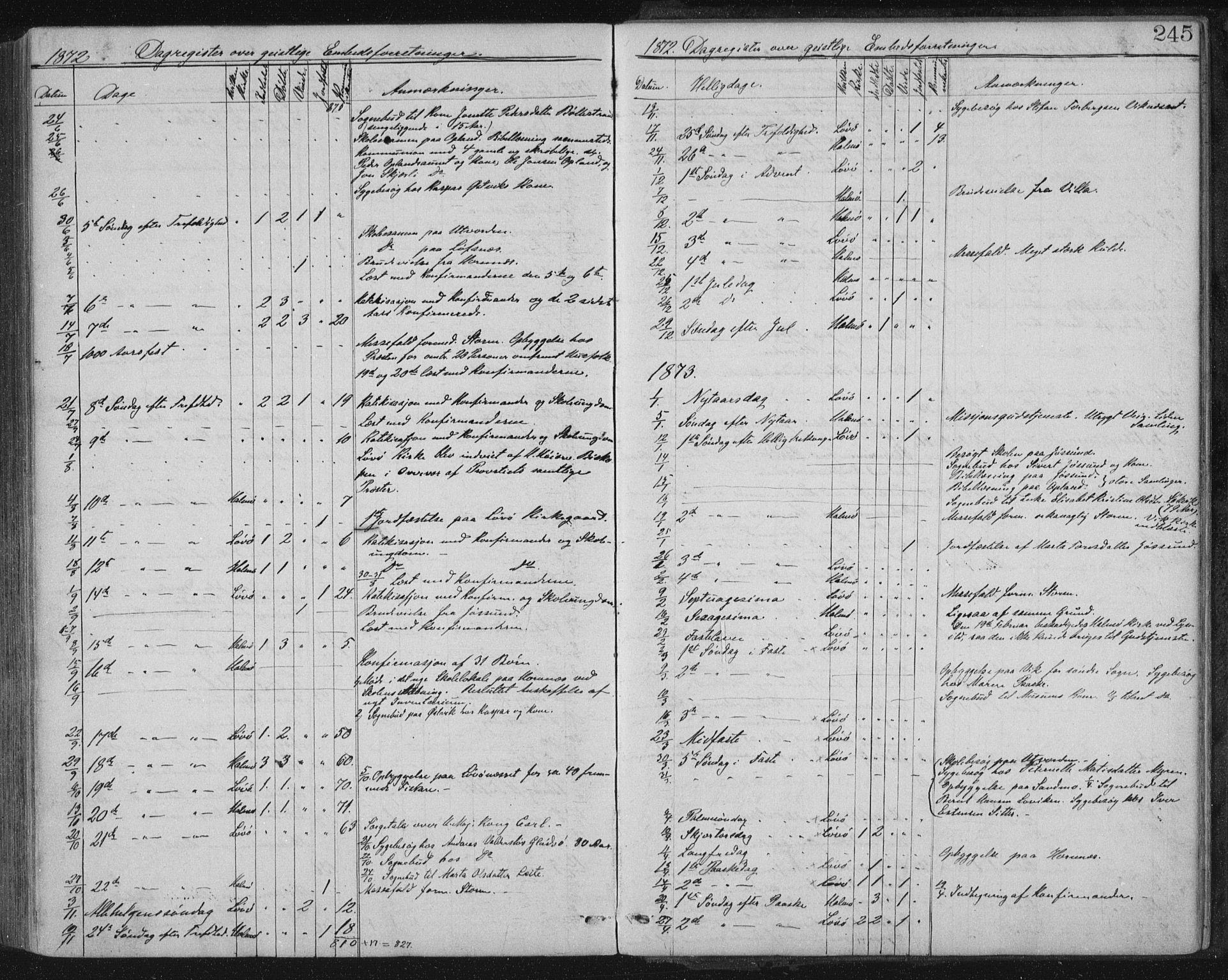 SAT, Ministerialprotokoller, klokkerbøker og fødselsregistre - Nord-Trøndelag, 771/L0596: Ministerialbok nr. 771A03, 1870-1884, s. 245