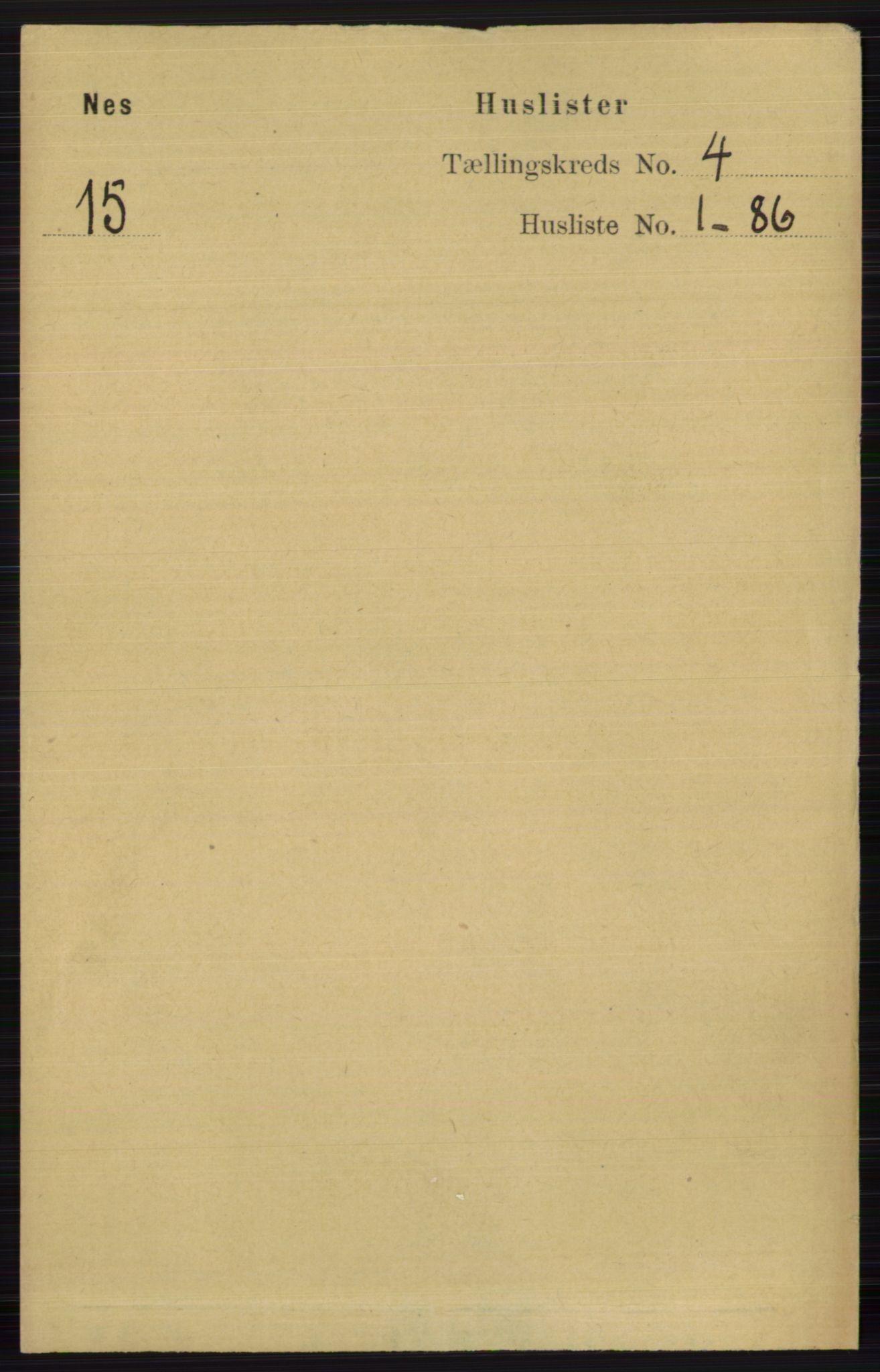 RA, Folketelling 1891 for 0616 Nes herred, 1891, s. 2021