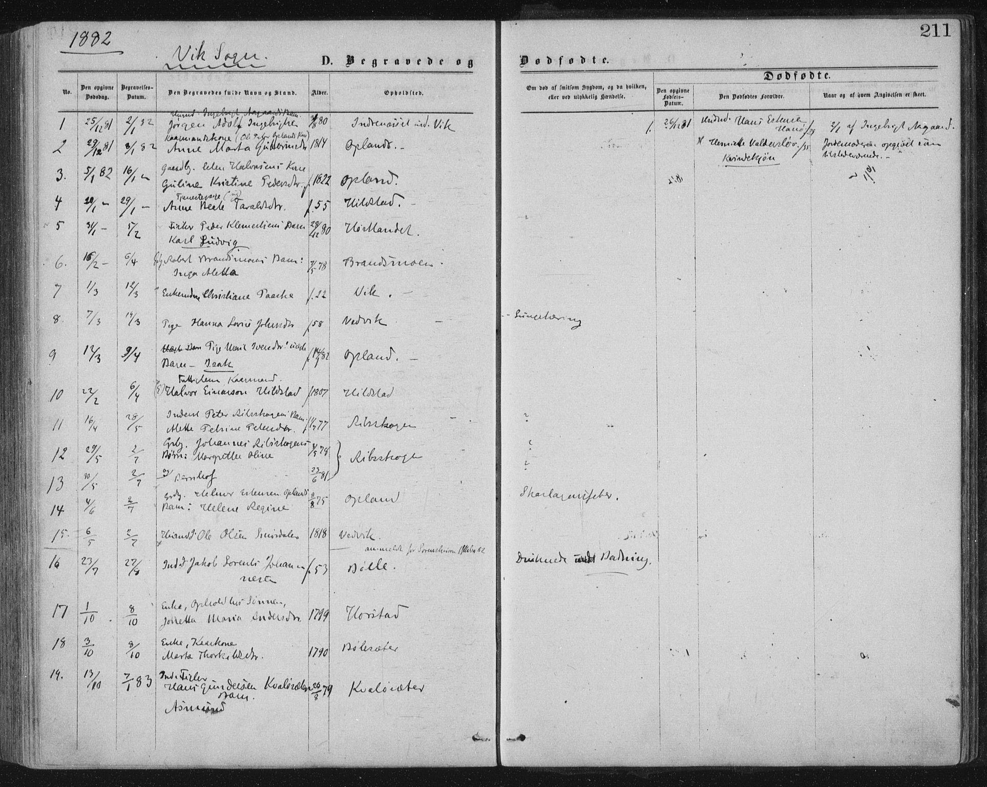 SAT, Ministerialprotokoller, klokkerbøker og fødselsregistre - Nord-Trøndelag, 771/L0596: Ministerialbok nr. 771A03, 1870-1884, s. 211