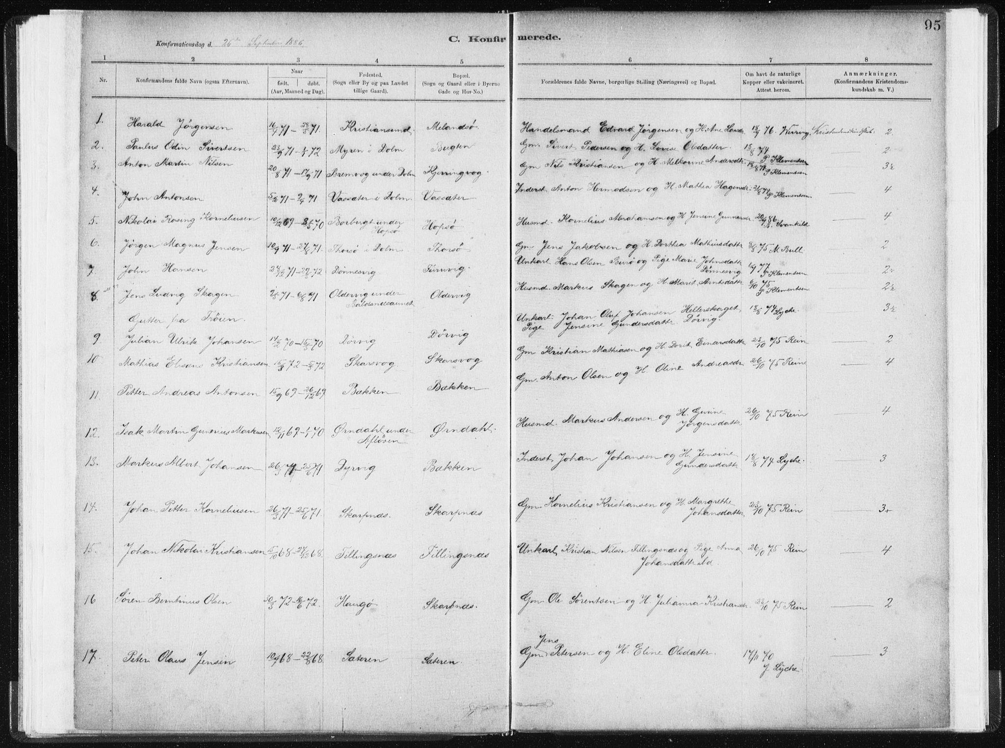 SAT, Ministerialprotokoller, klokkerbøker og fødselsregistre - Sør-Trøndelag, 634/L0533: Ministerialbok nr. 634A09, 1882-1901, s. 95