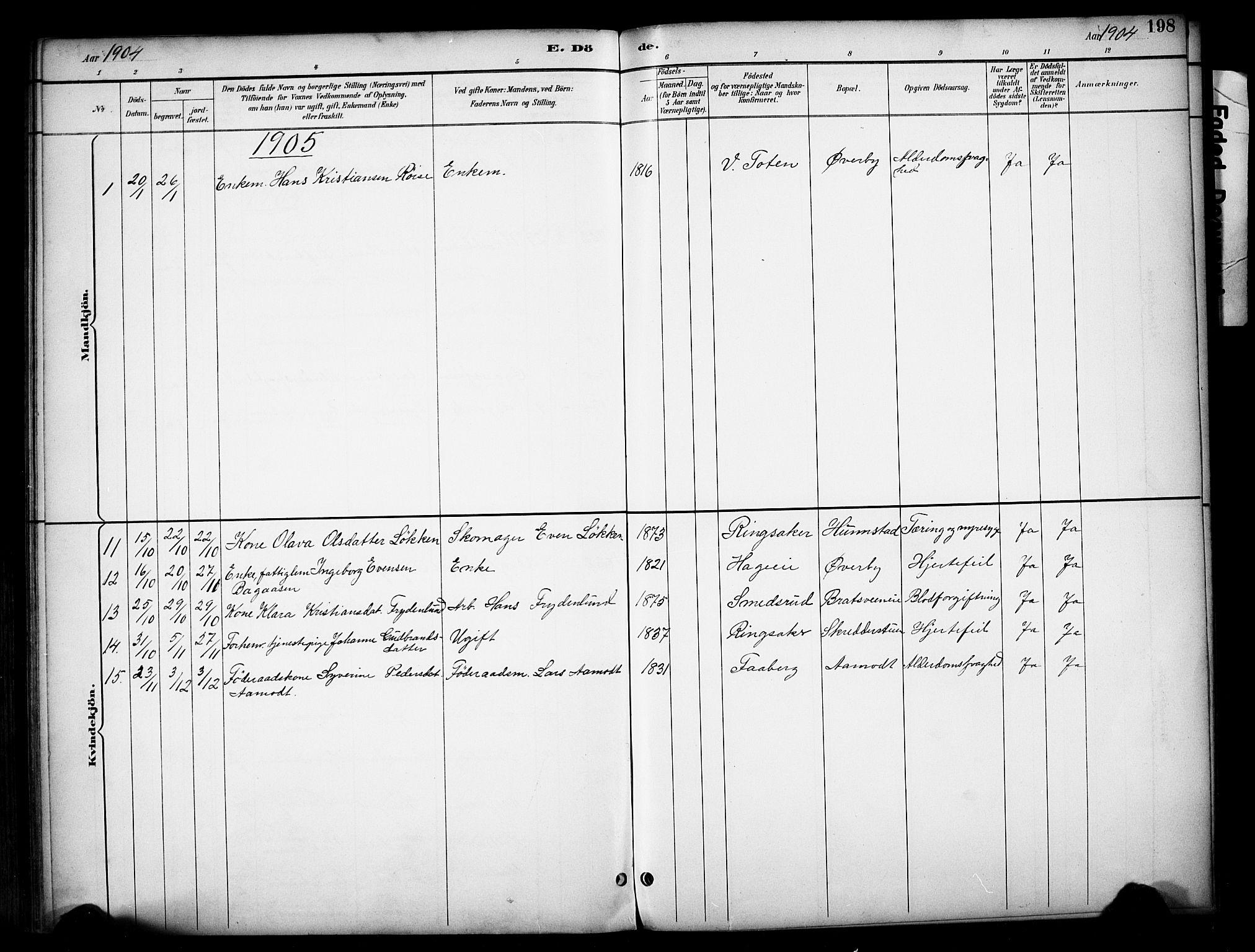 SAH, Vardal prestekontor, H/Ha/Haa/L0012: Ministerialbok nr. 12, 1893-1904, s. 198