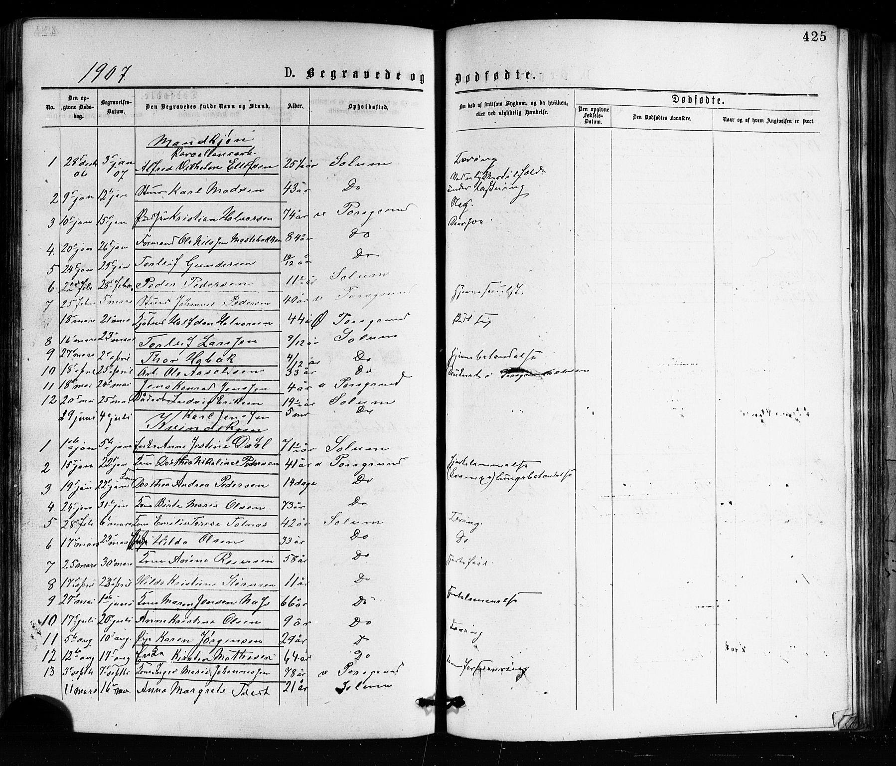 SAKO, Porsgrunn kirkebøker , G/Ga/L0003: Klokkerbok nr. I 3, 1877-1915, s. 425