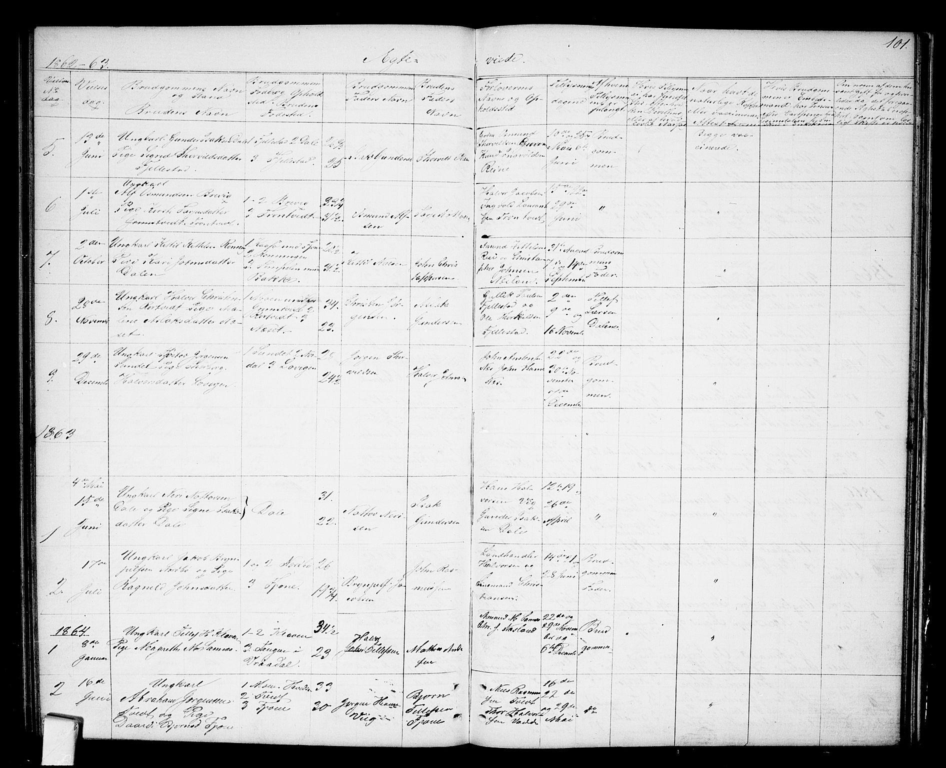 SAKO, Nissedal kirkebøker, G/Ga/L0002: Klokkerbok nr. I 2, 1861-1887, s. 101