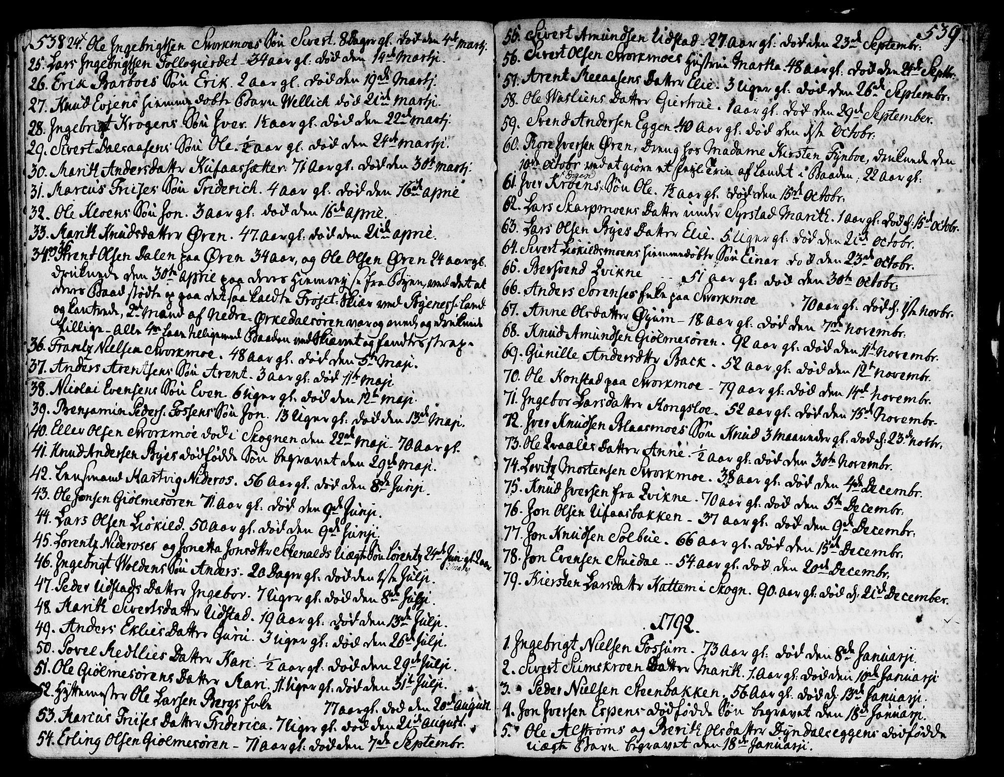 SAT, Ministerialprotokoller, klokkerbøker og fødselsregistre - Sør-Trøndelag, 668/L0802: Ministerialbok nr. 668A02, 1776-1799, s. 538-539