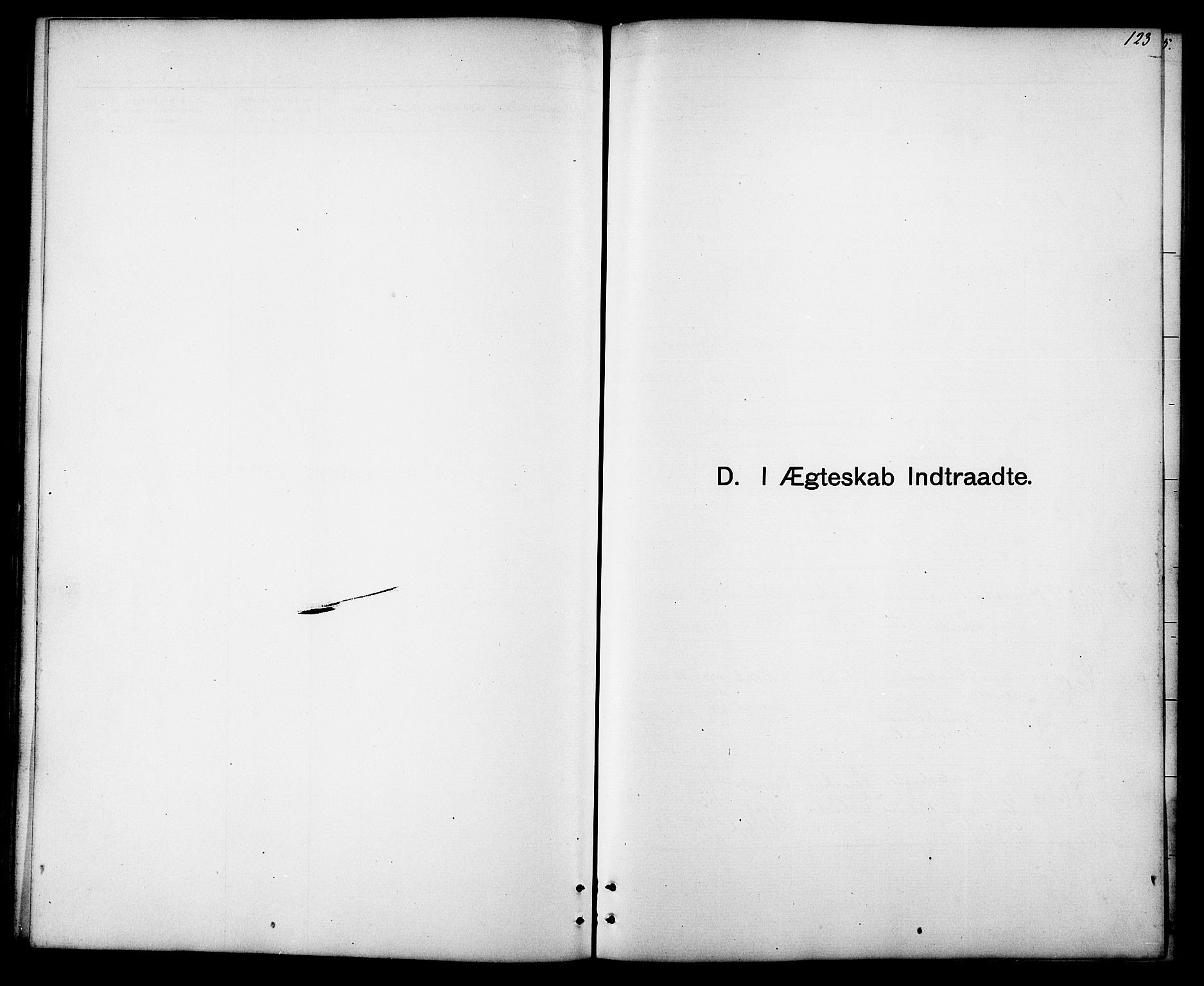 SAT, Ministerialprotokoller, klokkerbøker og fødselsregistre - Sør-Trøndelag, 694/L1132: Klokkerbok nr. 694C04, 1887-1914, s. 123