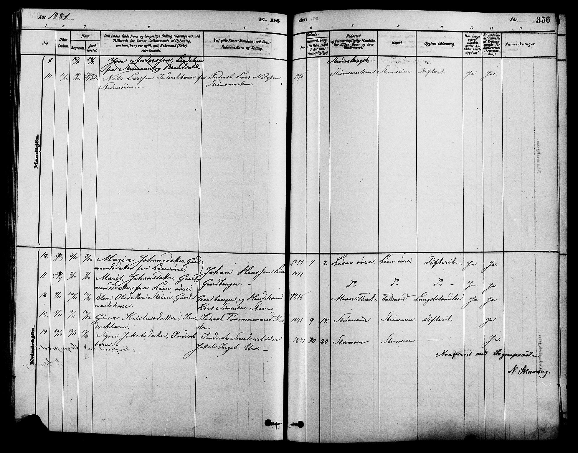 SAH, Alvdal prestekontor, Klokkerbok nr. 3, 1878-1907, s. 356