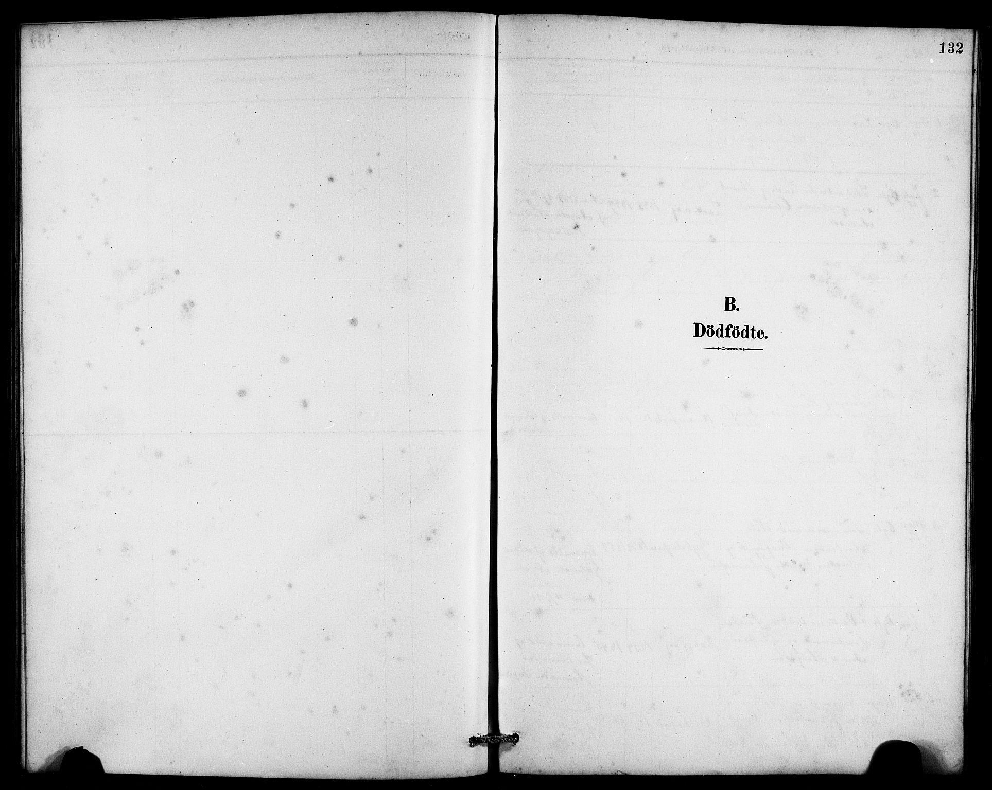 SAB, Laksevåg Sokneprestembete, H/Ha/Hab/Haba/L0003: Klokkerbok nr. A 3, 1887-1899, s. 132